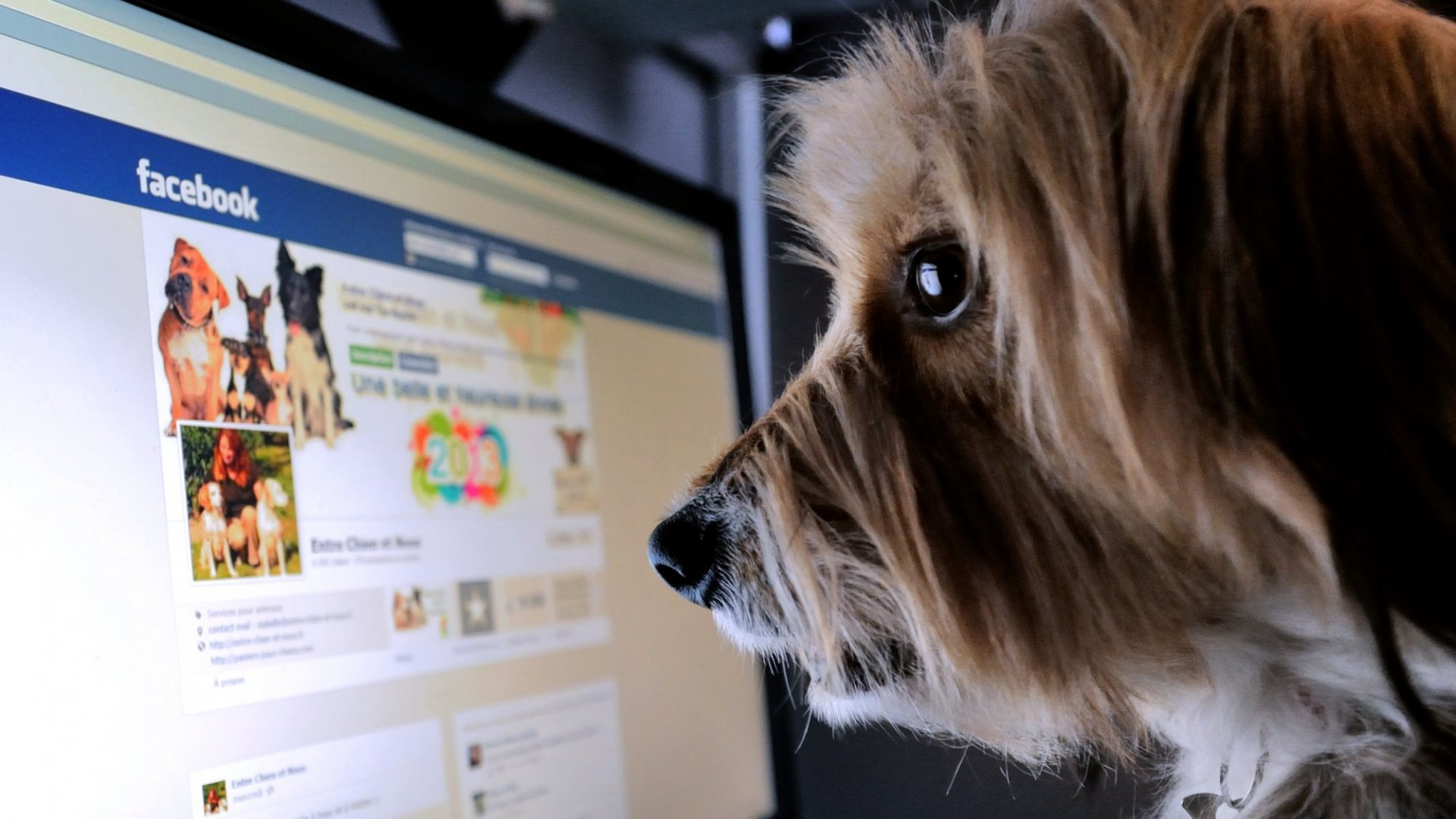 7 Things That Make Your Facebook Page Look Really Unprofessional