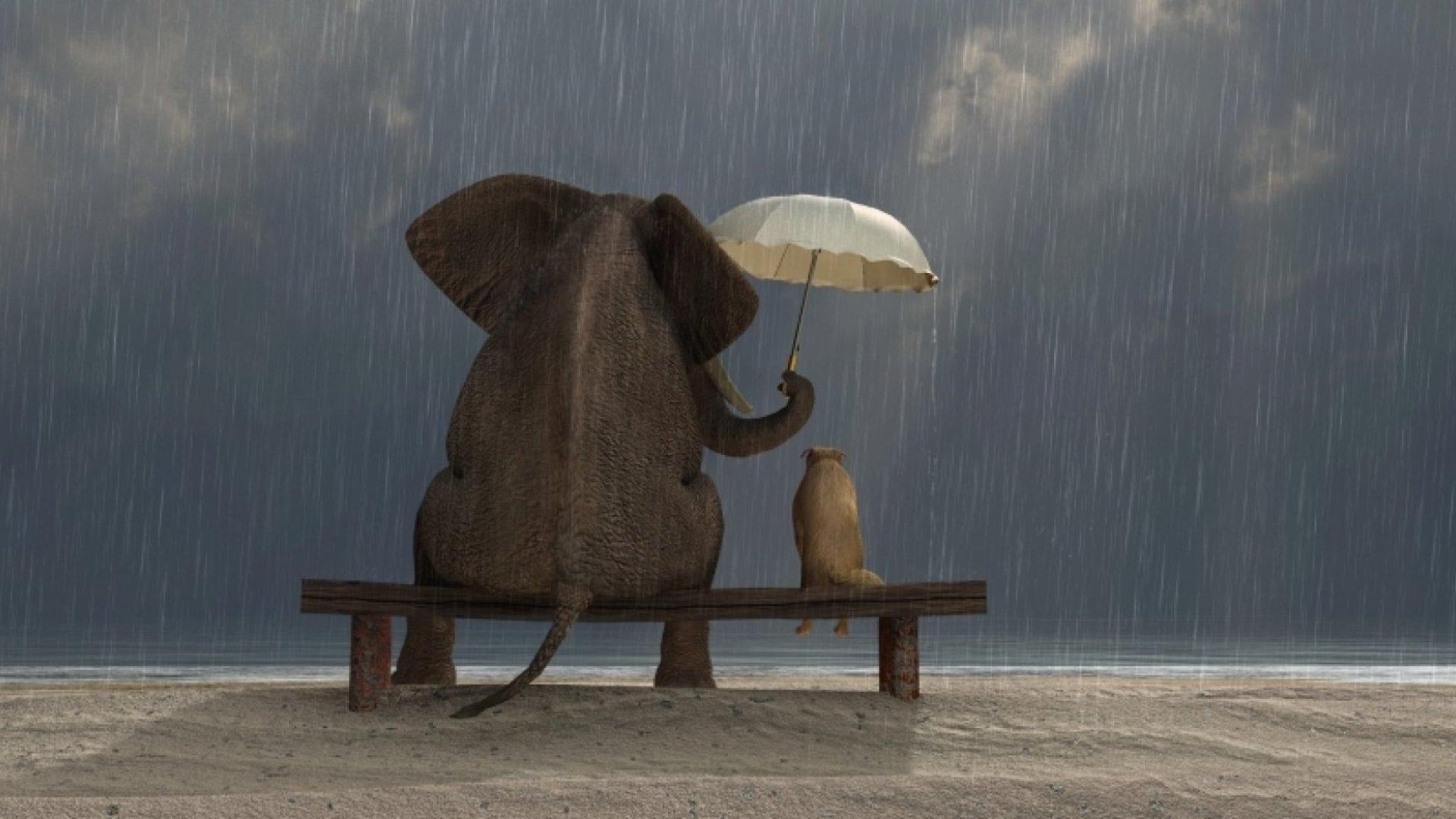 7 Super Effective Ways to Make Kindness a Habit