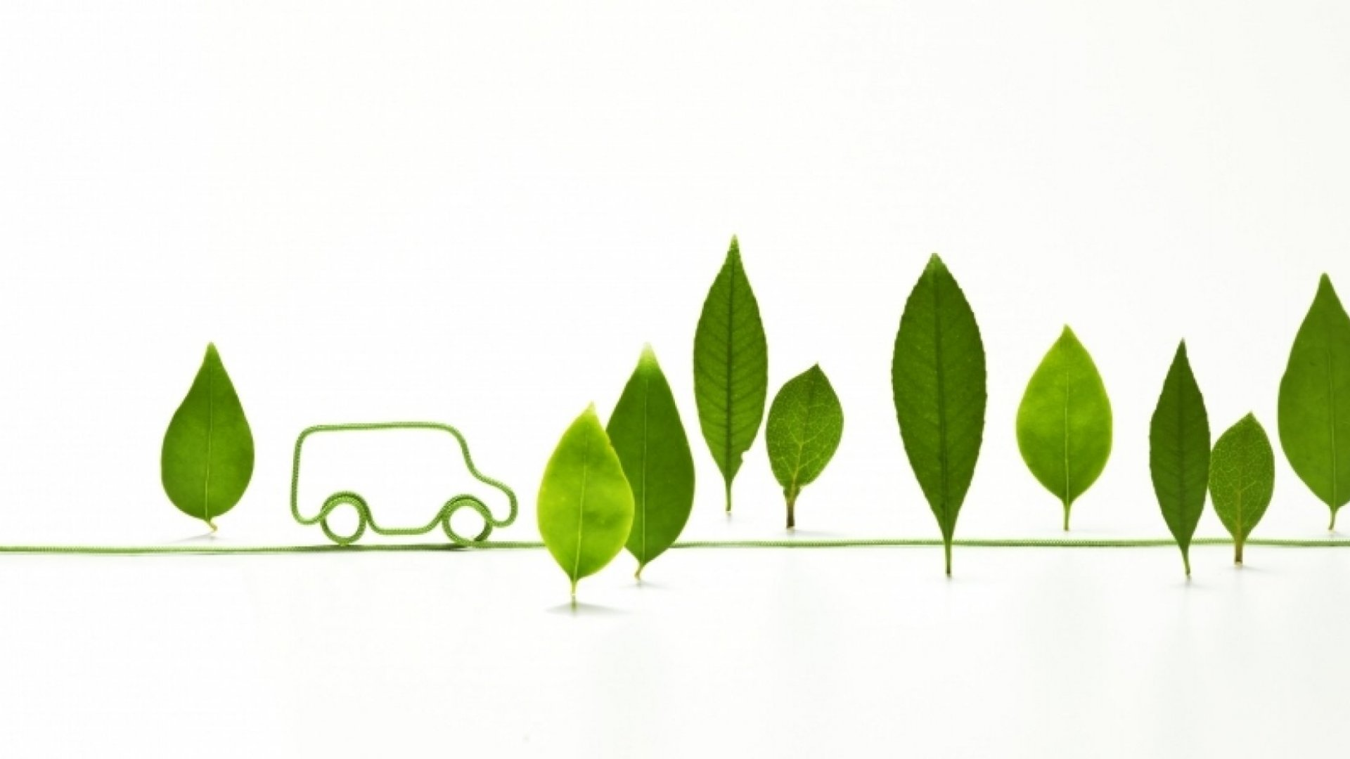Eco-Friendly Initiatives At Workplaces, For Workplaces