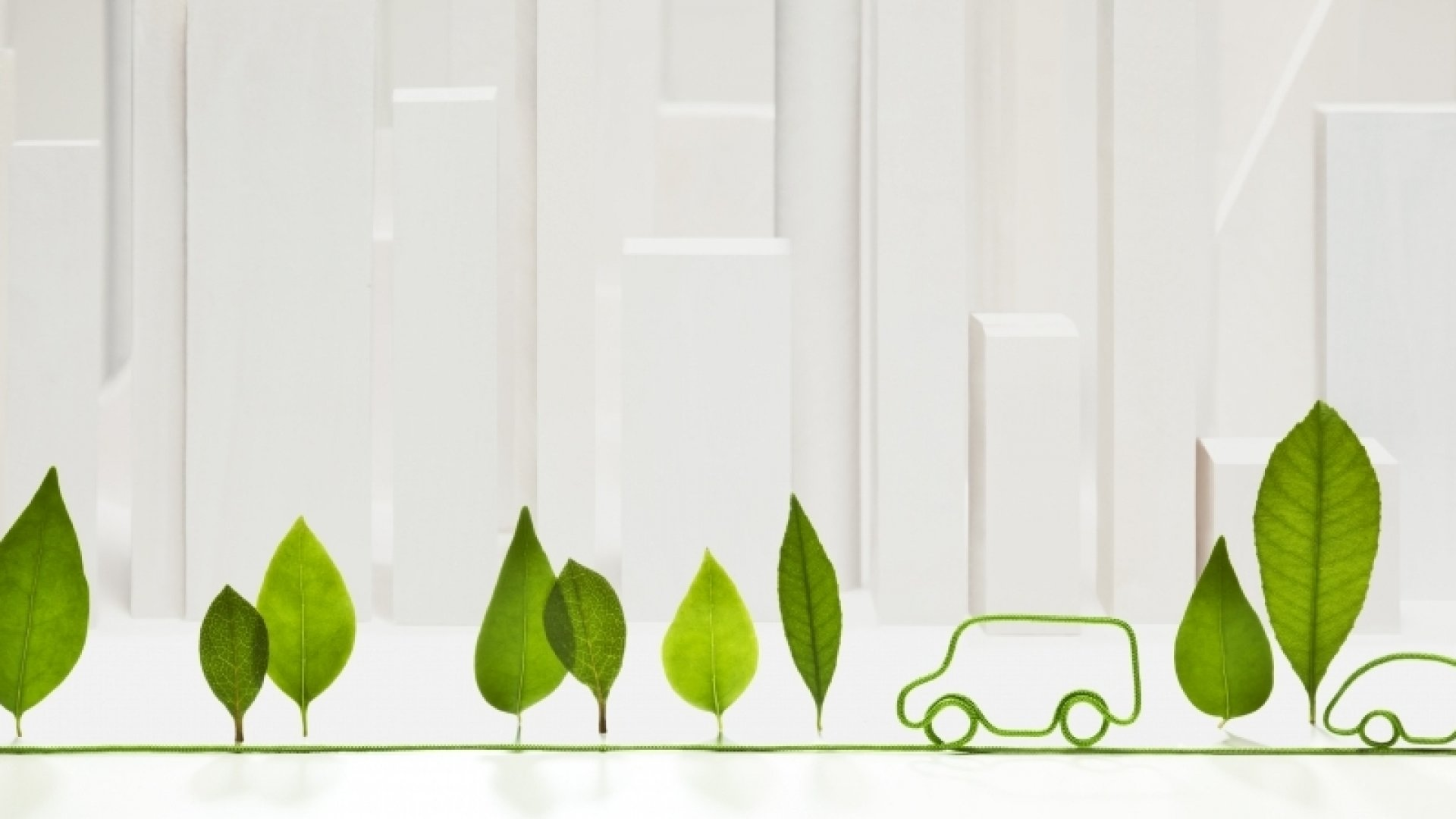Green Marketing Ideas for Sustainable Businesses