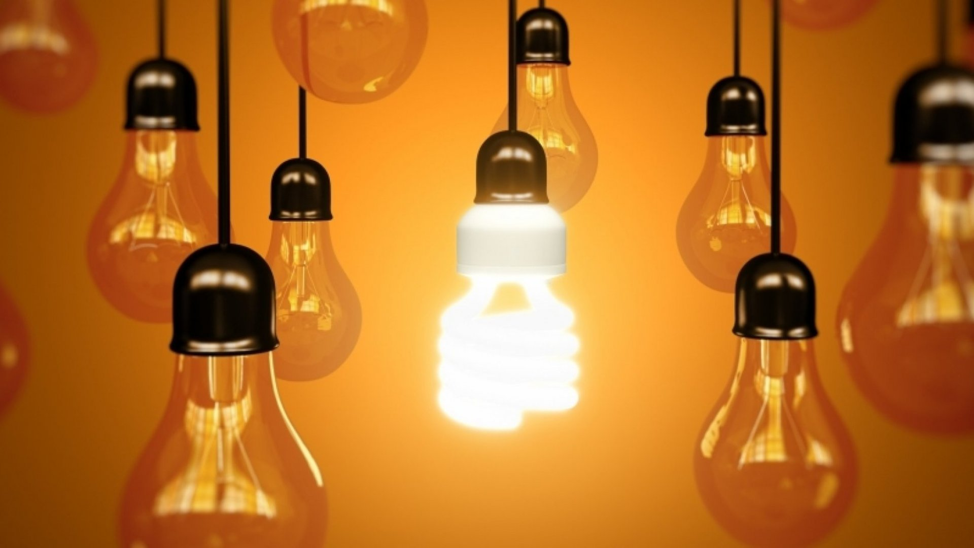 4 Niche Companies With Big Ideas On Innovation
