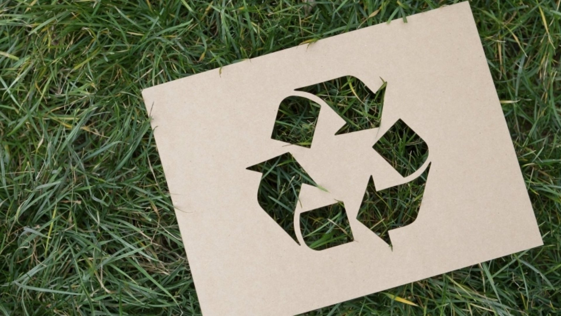 What a Circular Economy is, and Why You Should Care