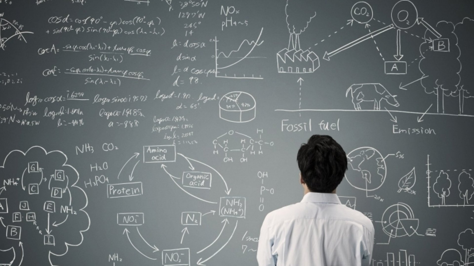 Why Your Business Needs to Have a Good 'Corporate Theory'