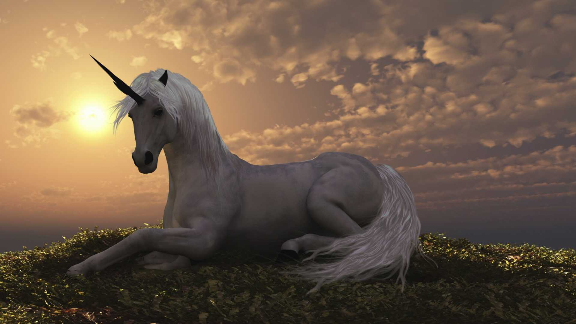 This Company Says It Has Identified the Next 10 Unicorn Startups