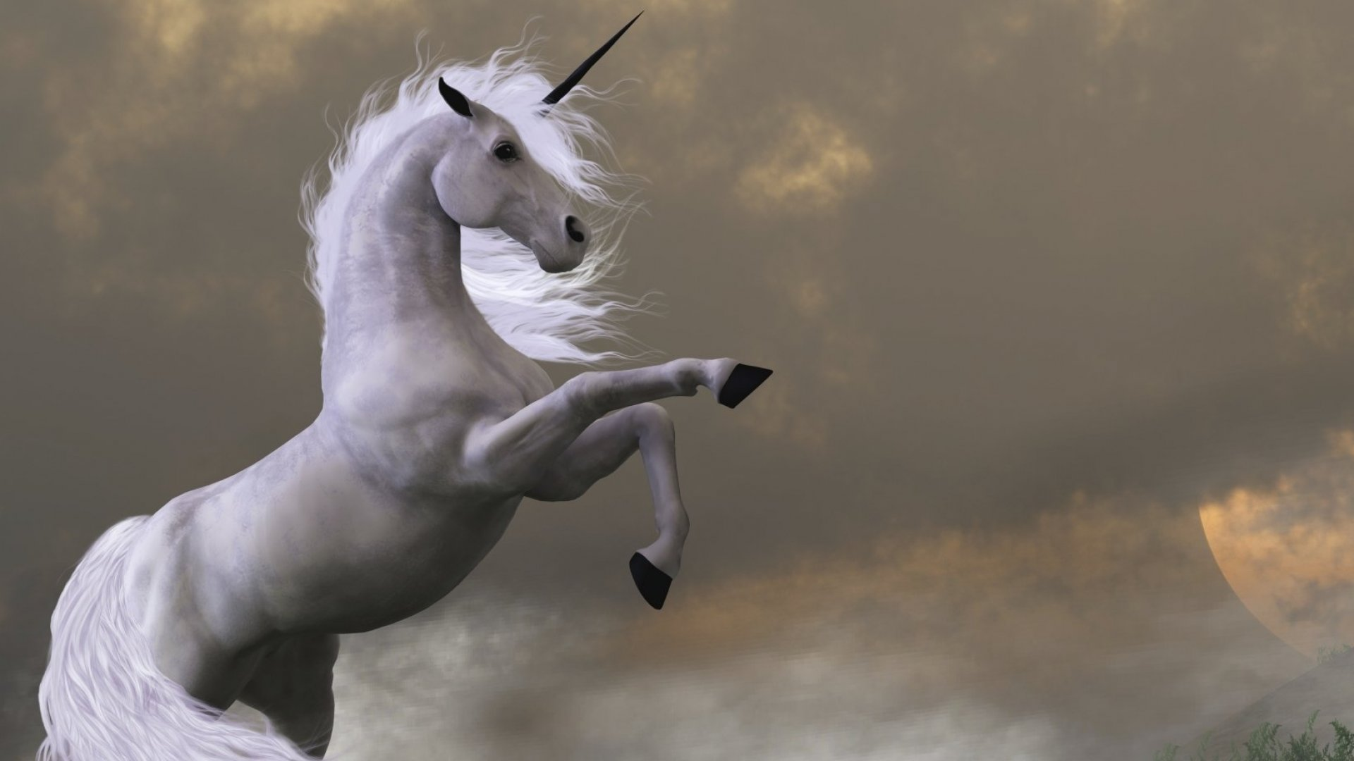 Why Domo Is the Most Undervalued Unicorn