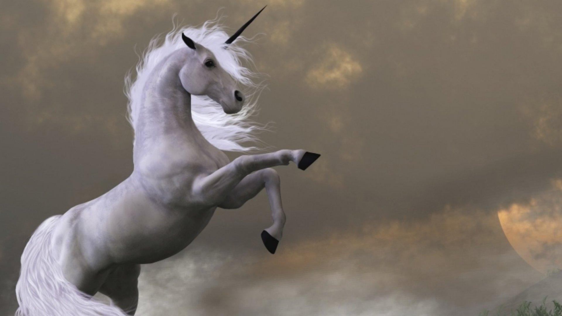 Top 10 Female Founder Unicorns