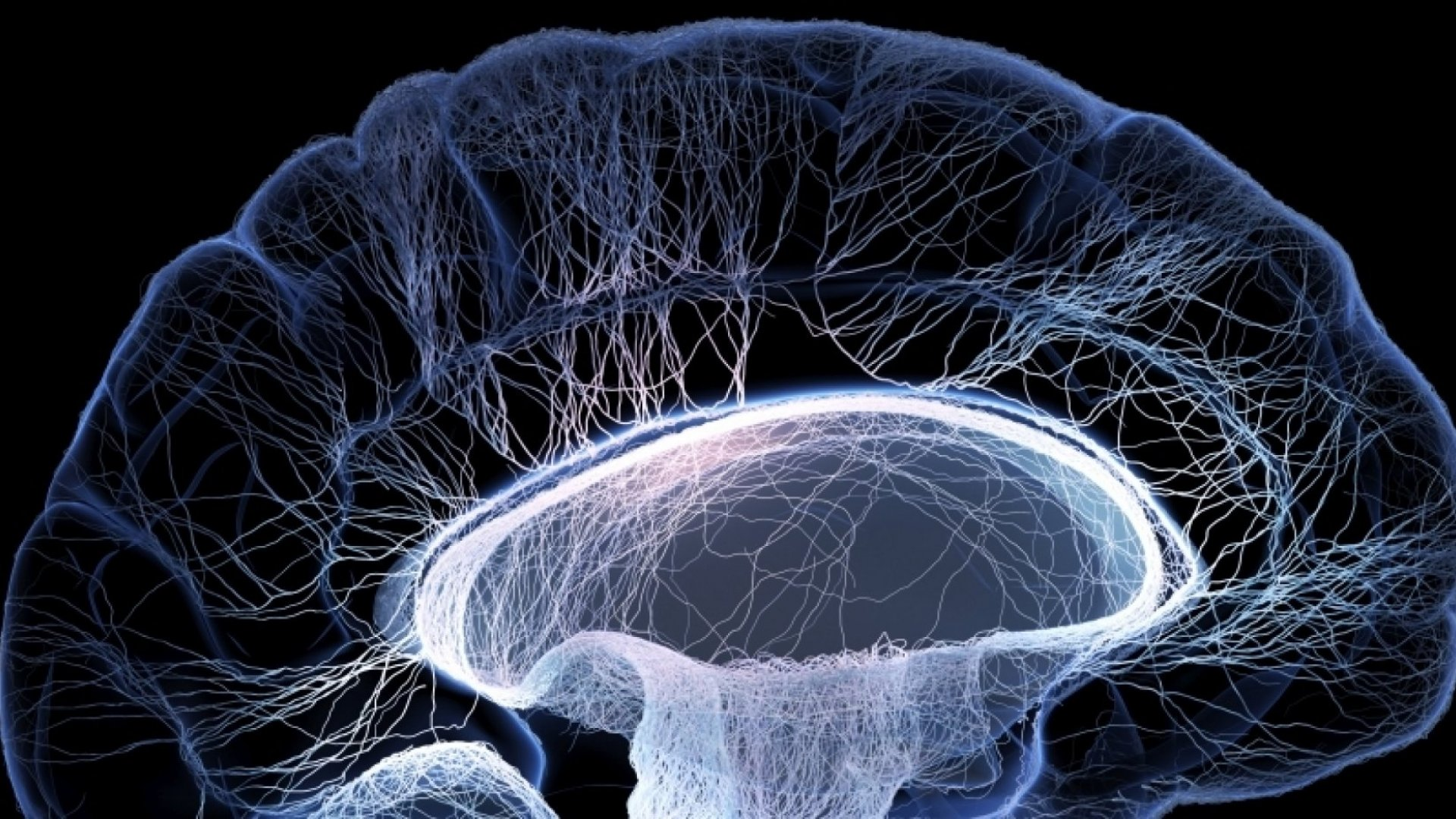 How Neuroscience Will Make You a Better Leader
