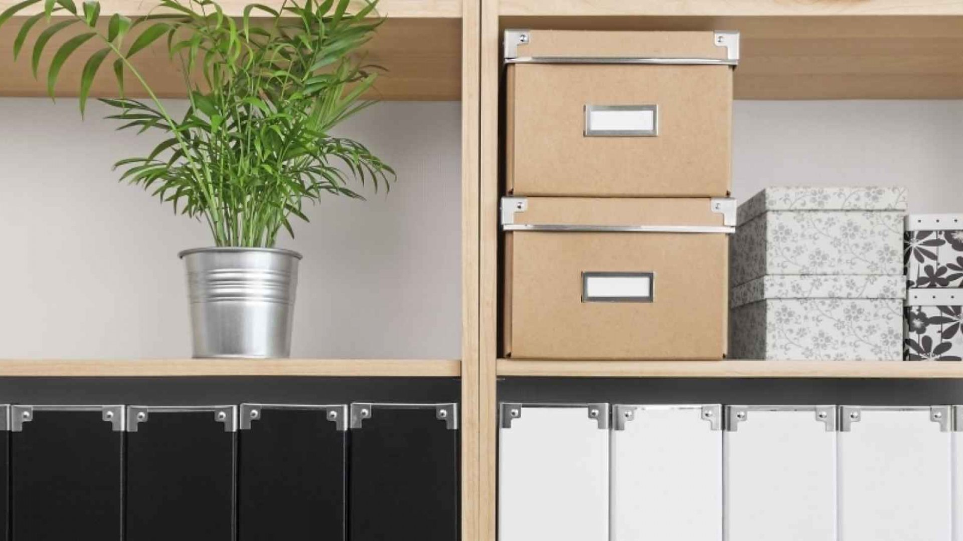 How These 7 Entrepreneurs Stay Super Organized