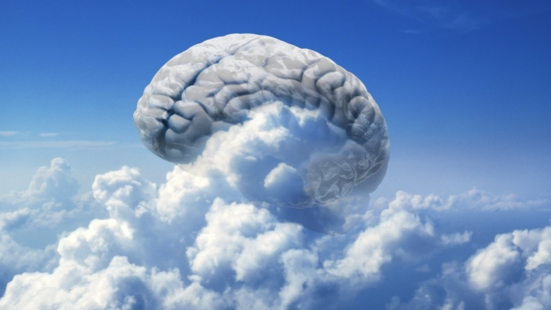 Train Your Brain For Peak Performance