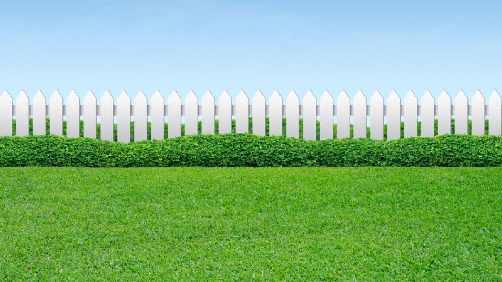 How LawnStarter Hit Double-Digit Growth Through Creative Marketing