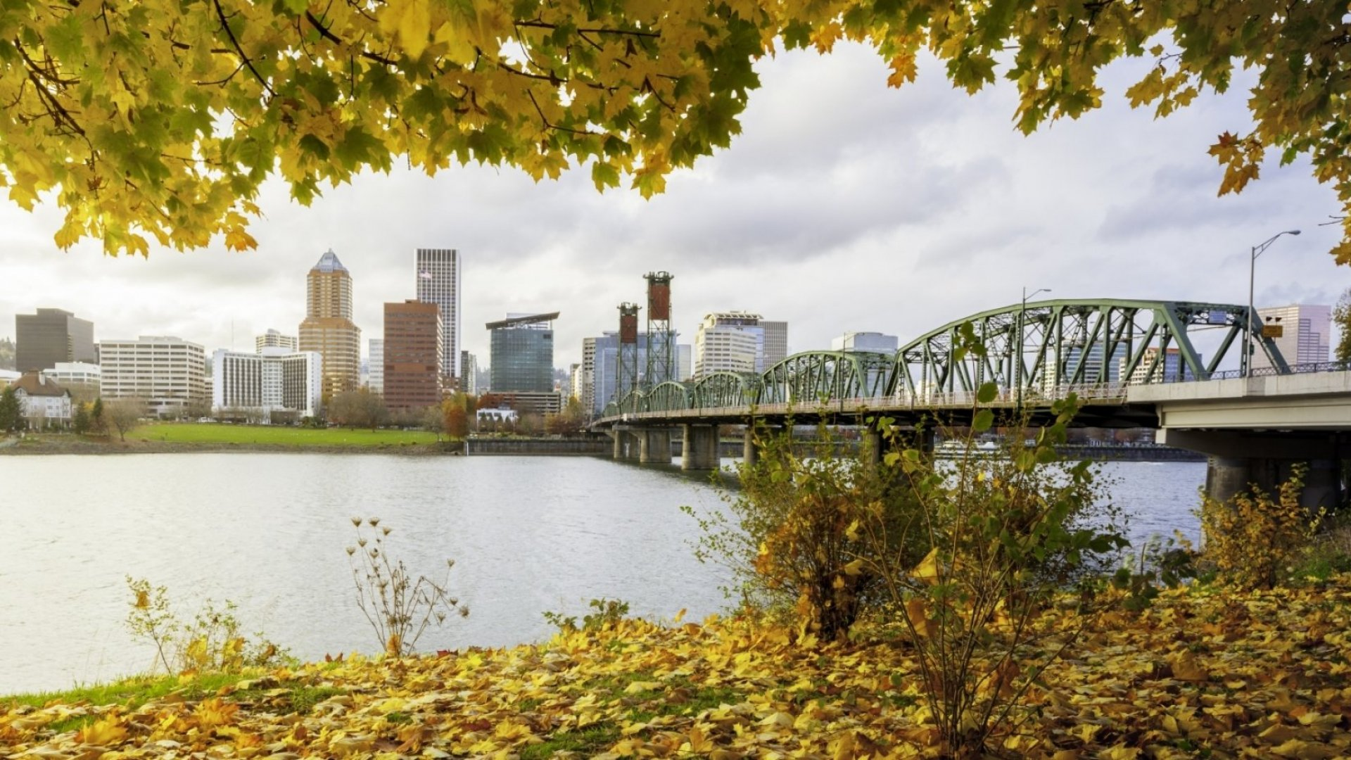 5 Thriving Women-Led Companies to Watch in Portland, Oregon