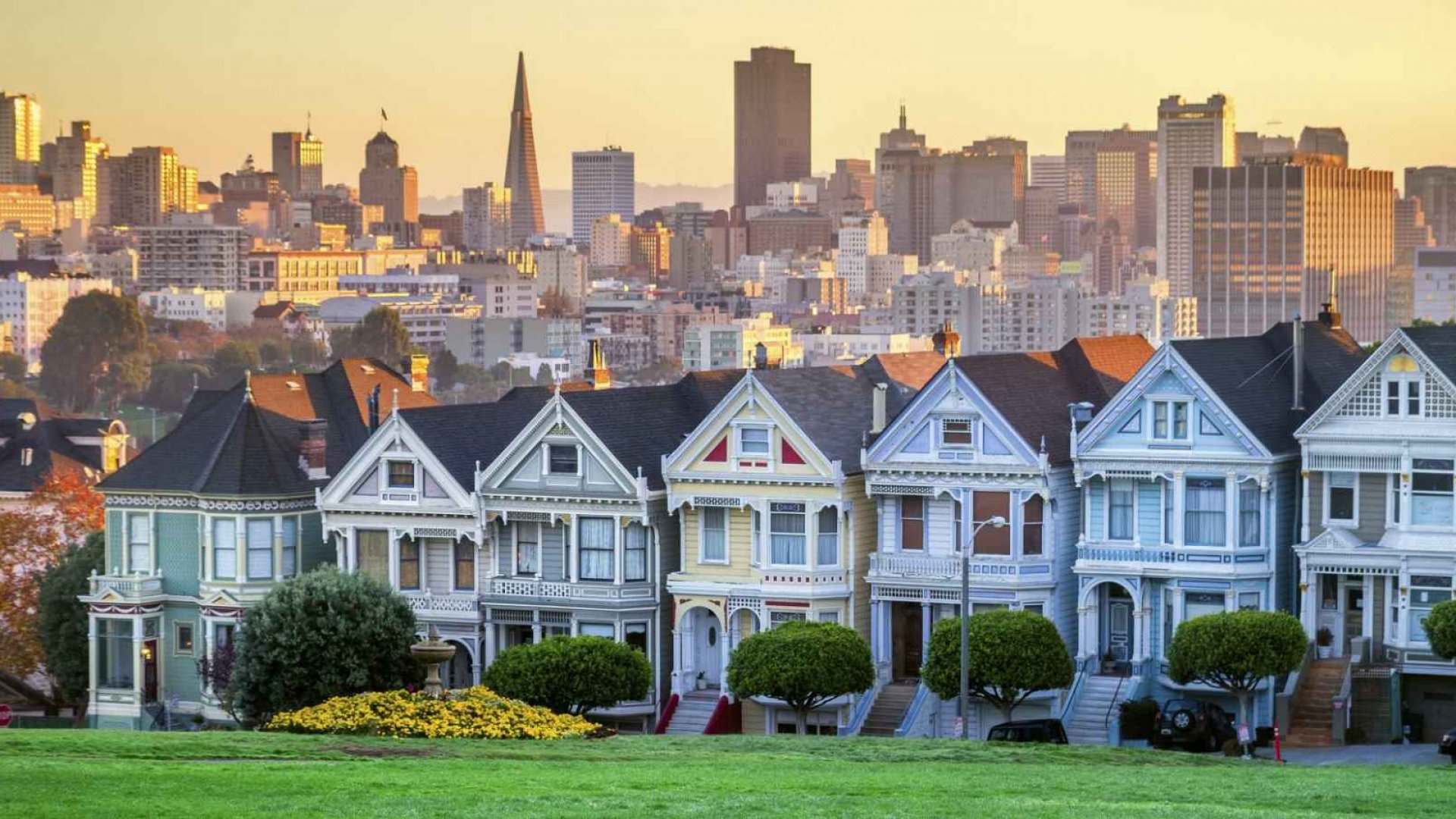 In San Francisco, entrepreneurs suffer. They really suffer.
