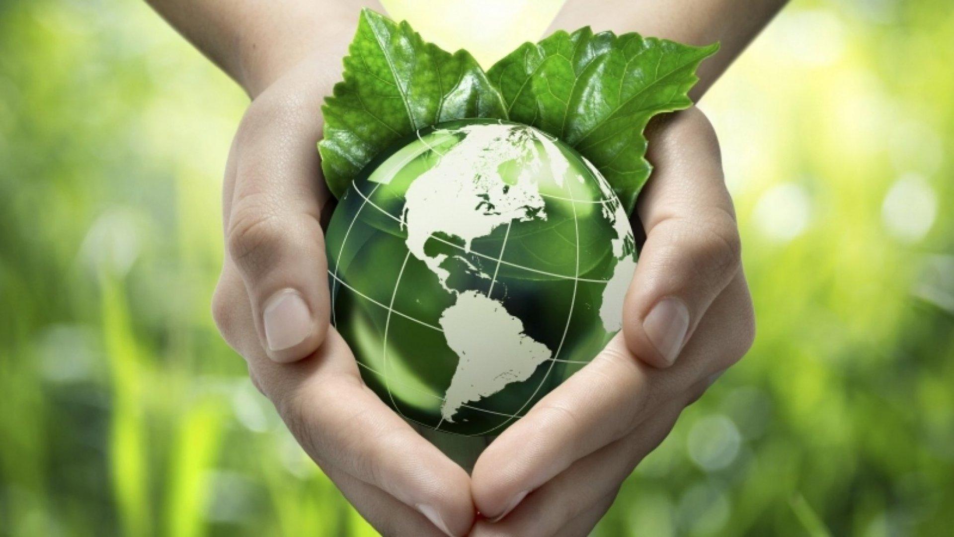 The Eco-Challenge