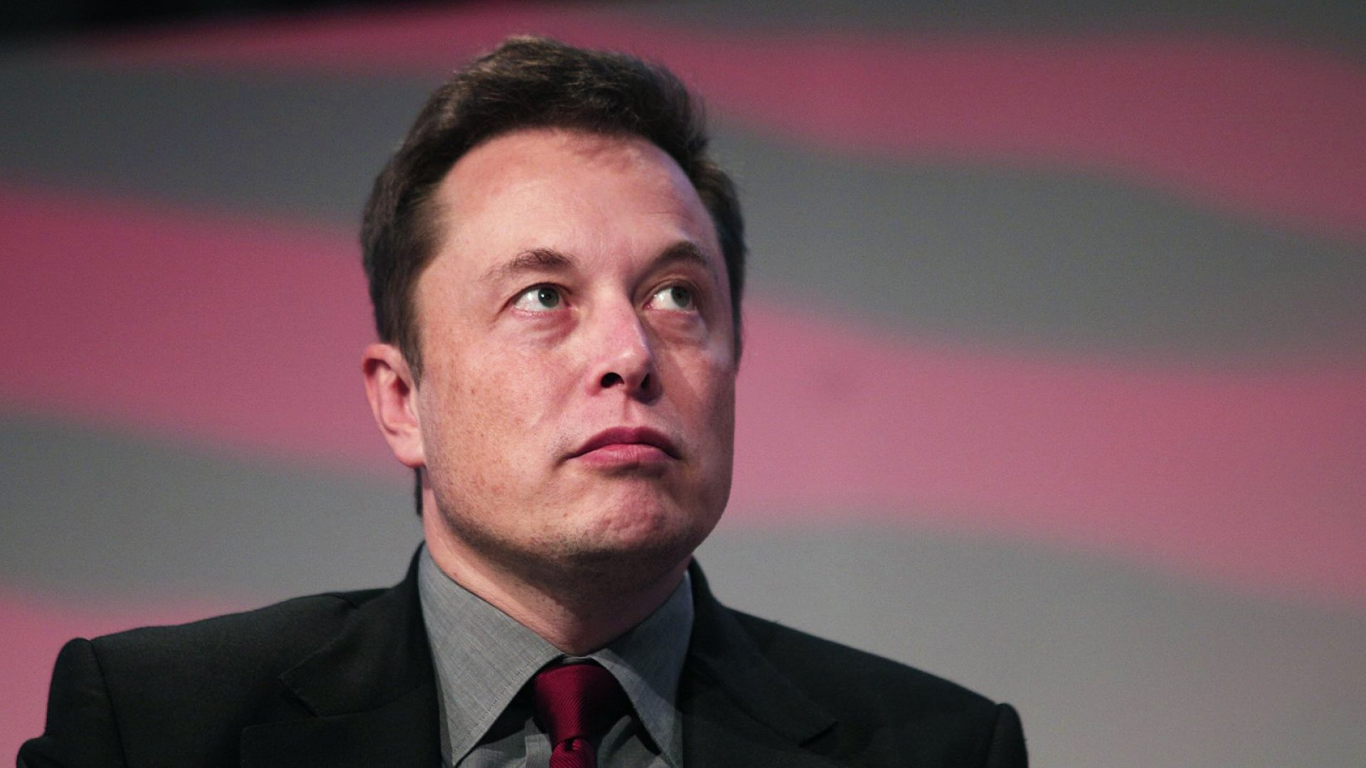 Elon Musk Threatens to Build a Moat Filled With Candy to Keep Warren Buffett at Bay