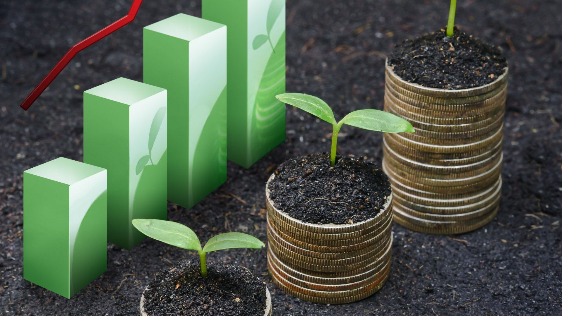 The Rising Tide of Sustainable Investing
