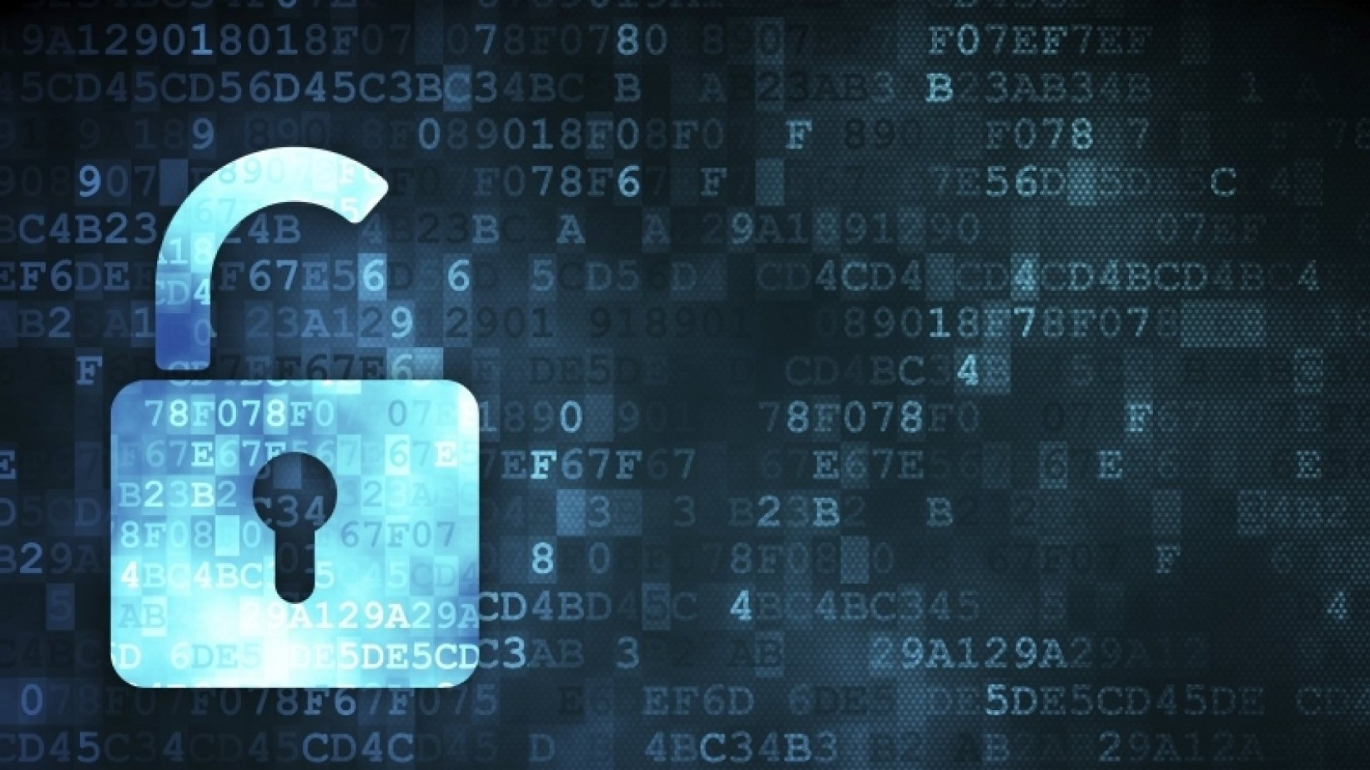 5 Data Security Hacks to Protect Your Business