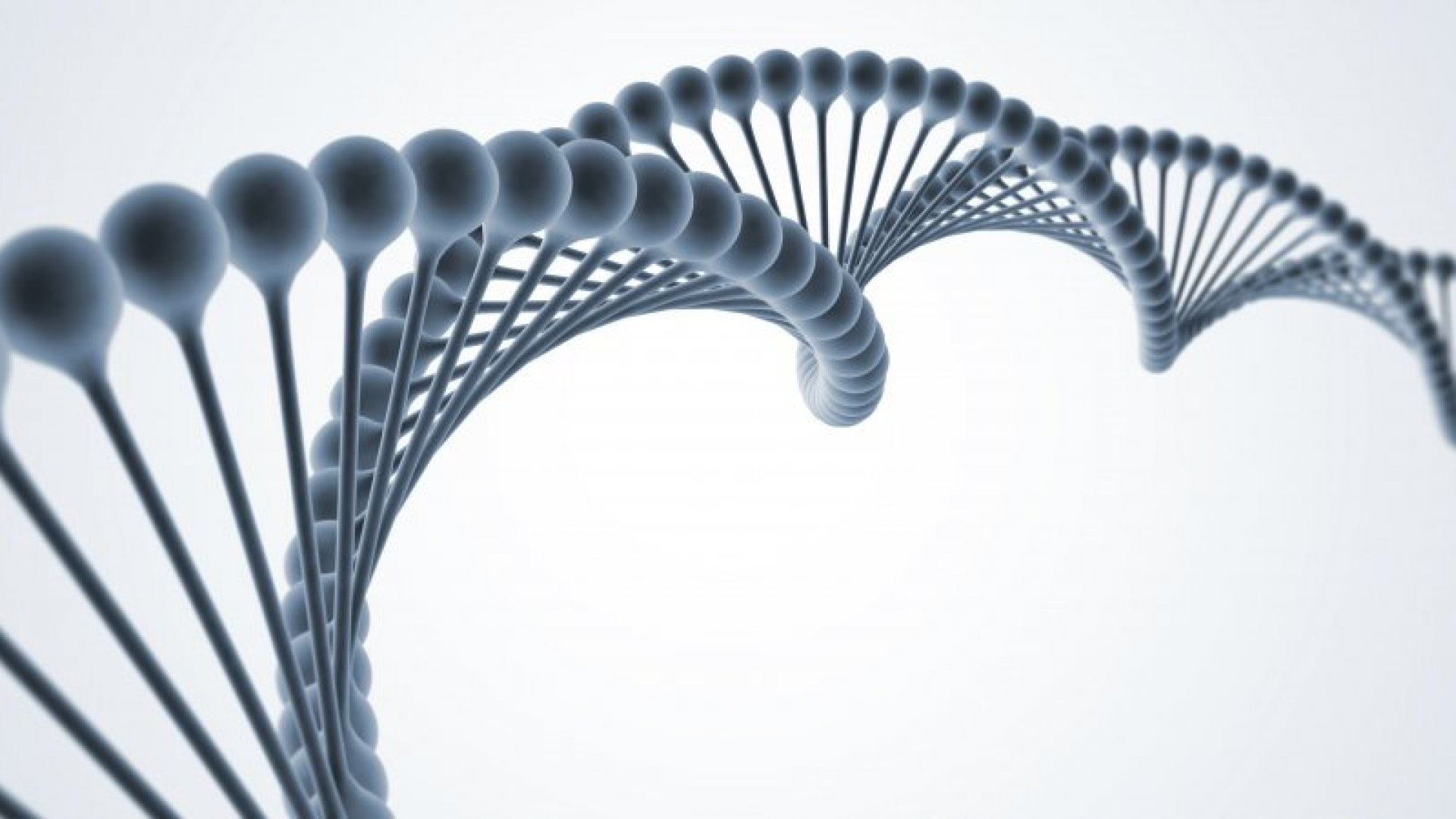 How Entrepreneurship Might Be Genetic