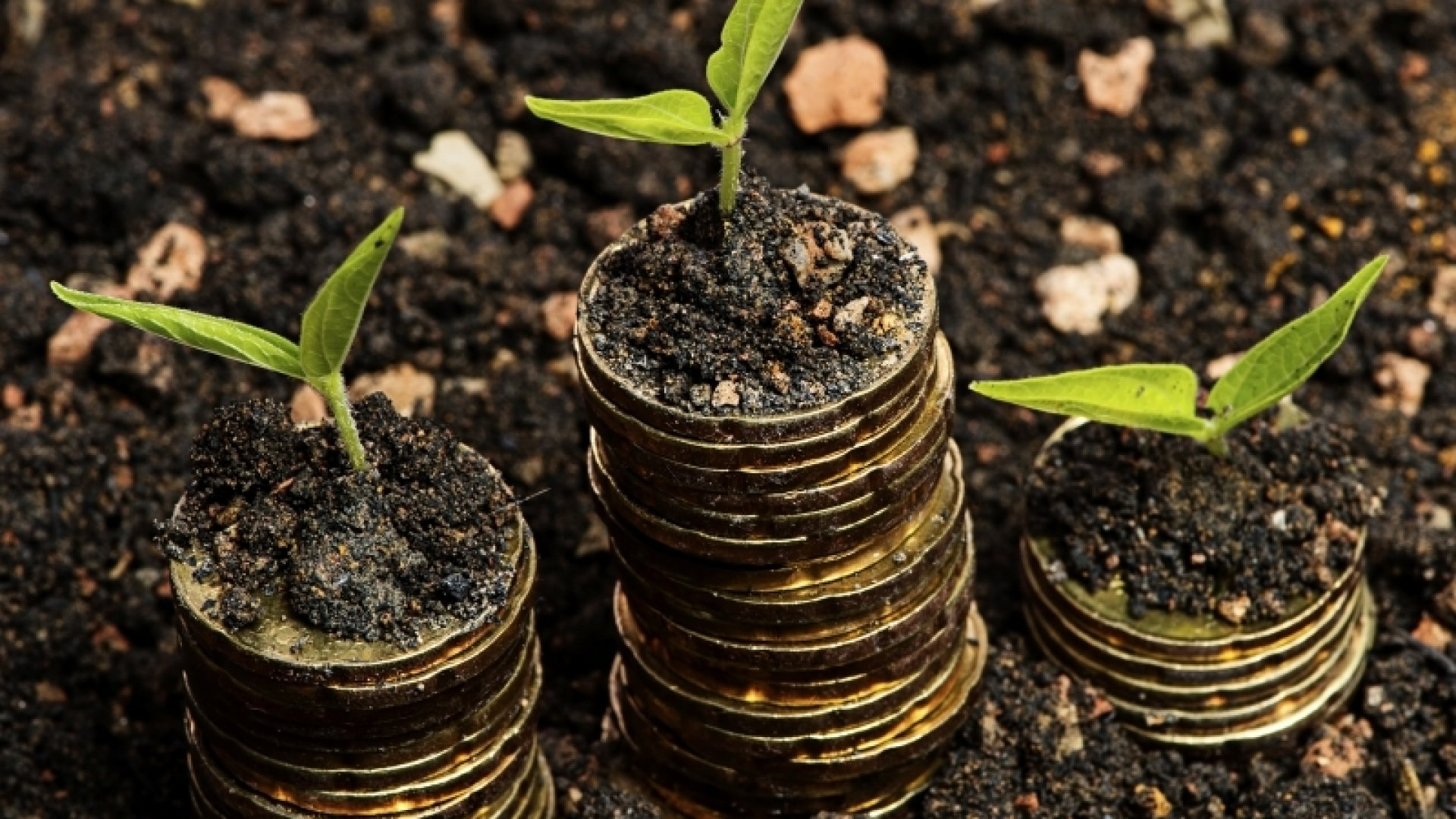 5 of the Most Impressive Seed Funding Wins of the Past Five Years