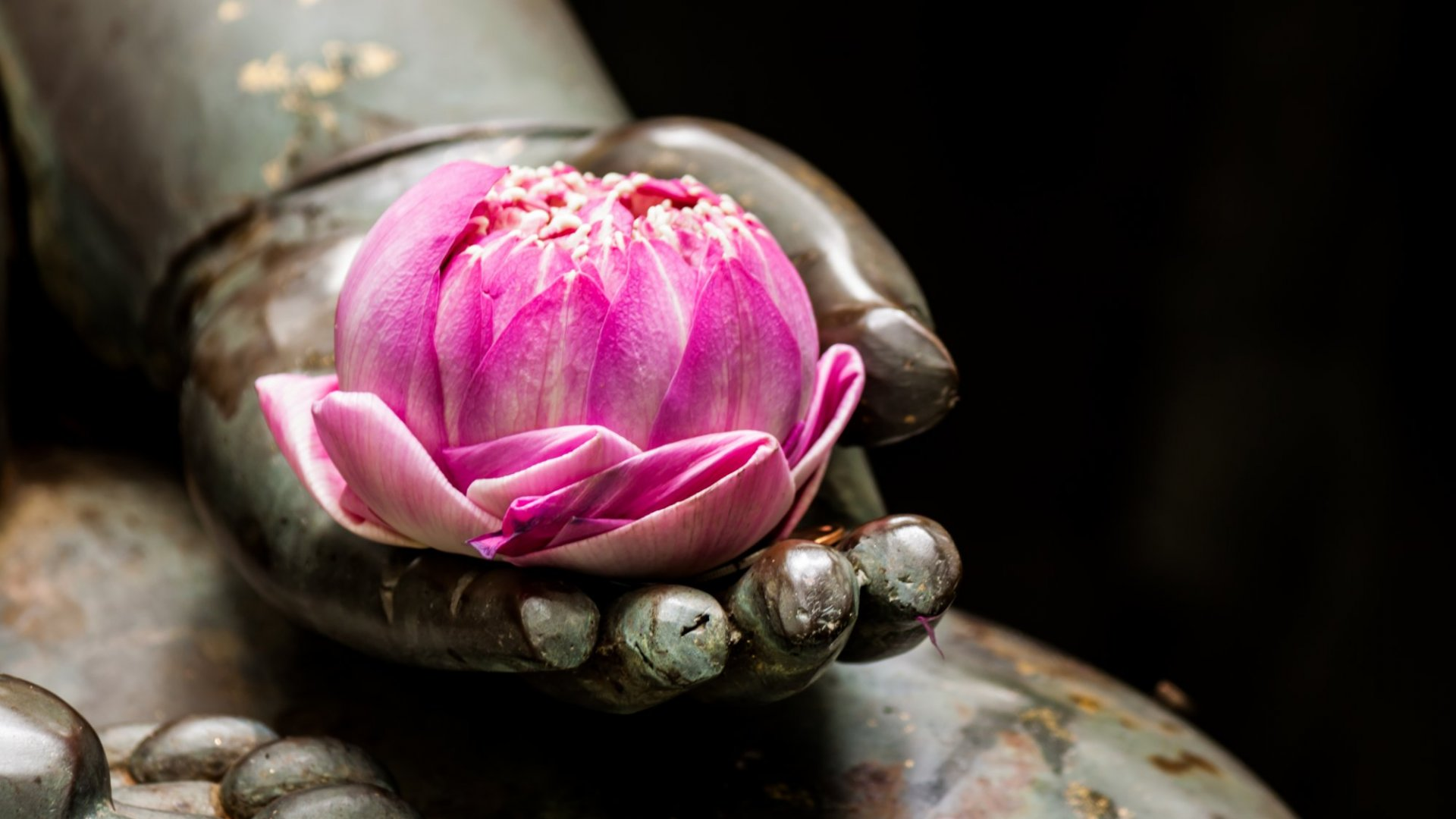 Marshall Goldsmith: Buddha for Women Entrepreneurs