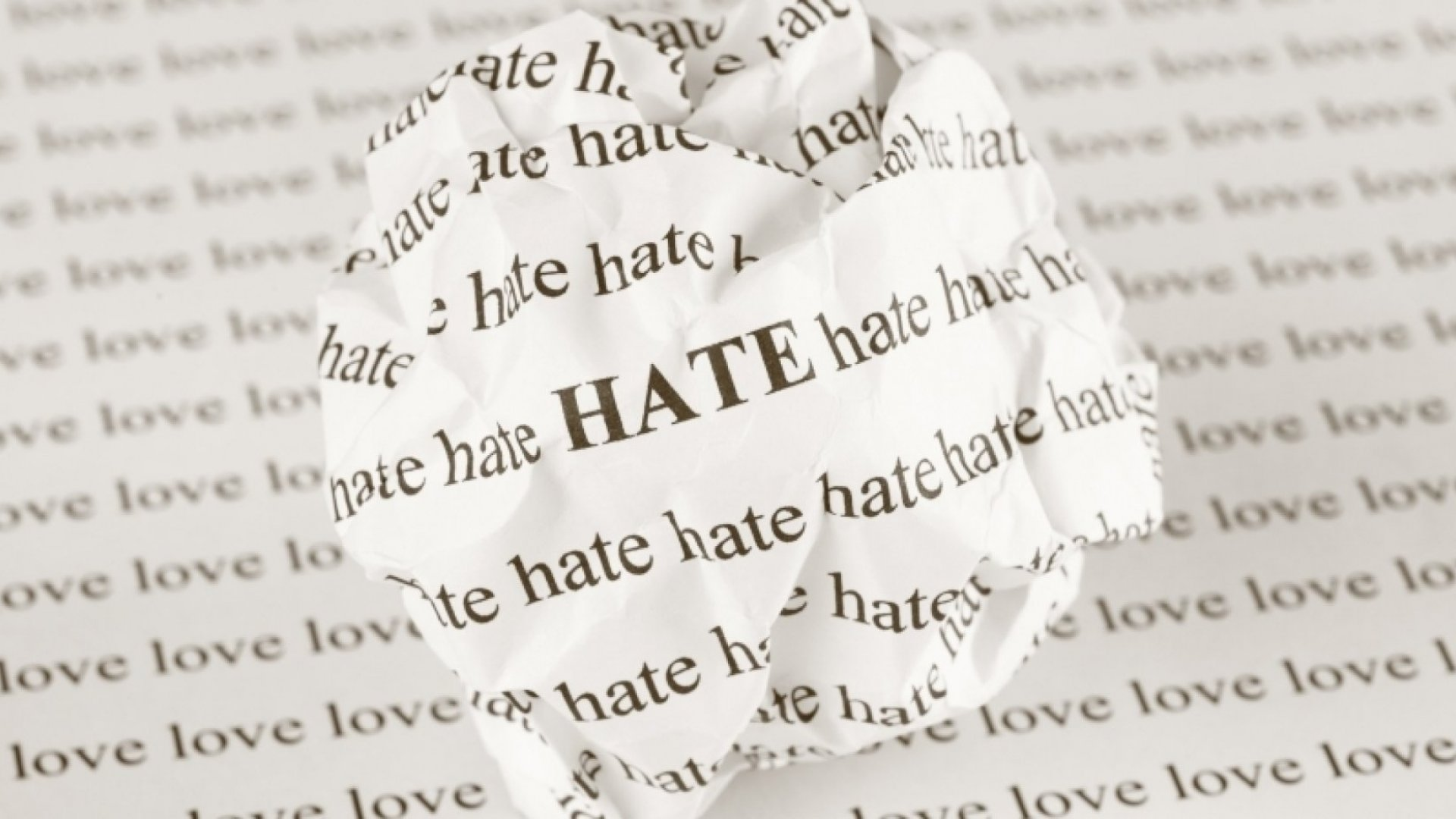 No Matter What You Like, Someone Else Will Hate It