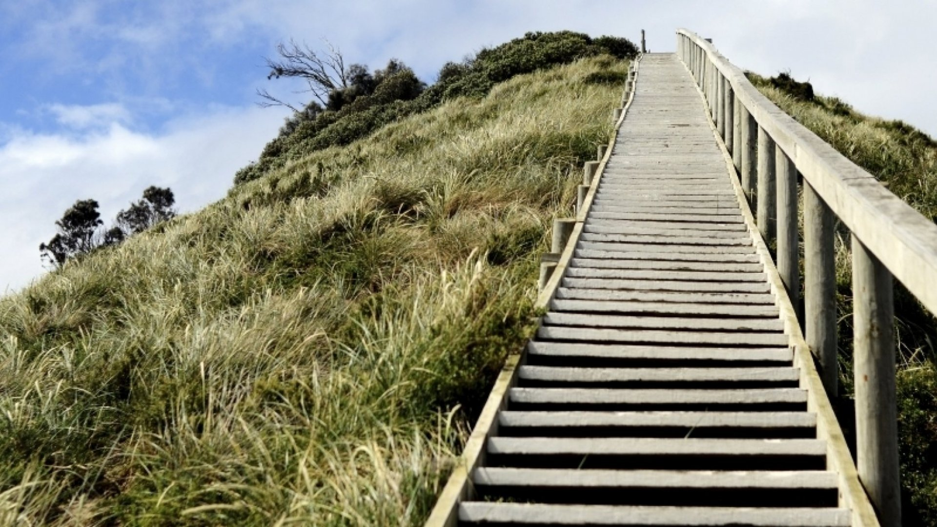 How to Reverse Adversity and Bounce Back Stronger Than Ever
