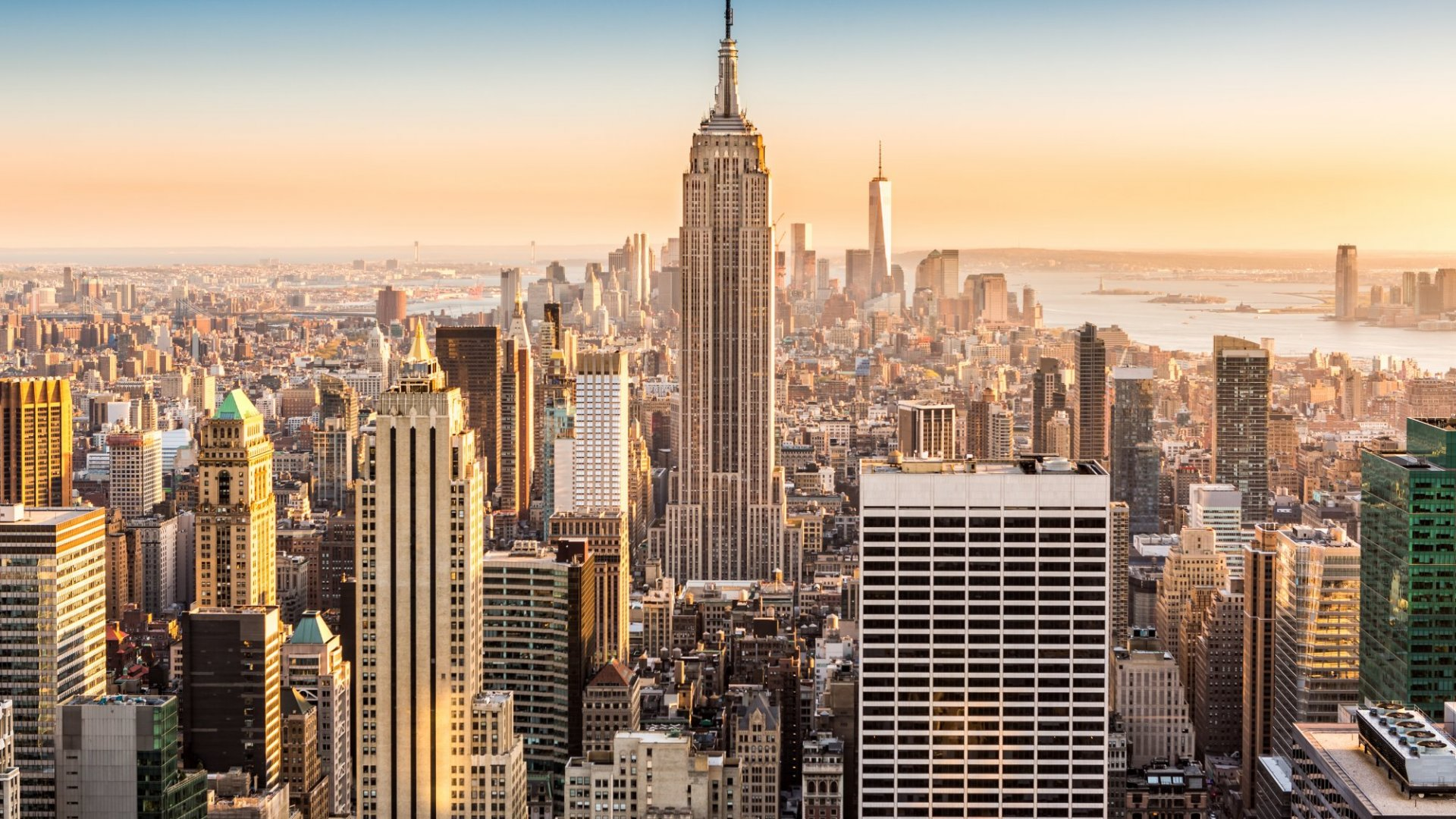 How the World of Startups Is Changing in New York City