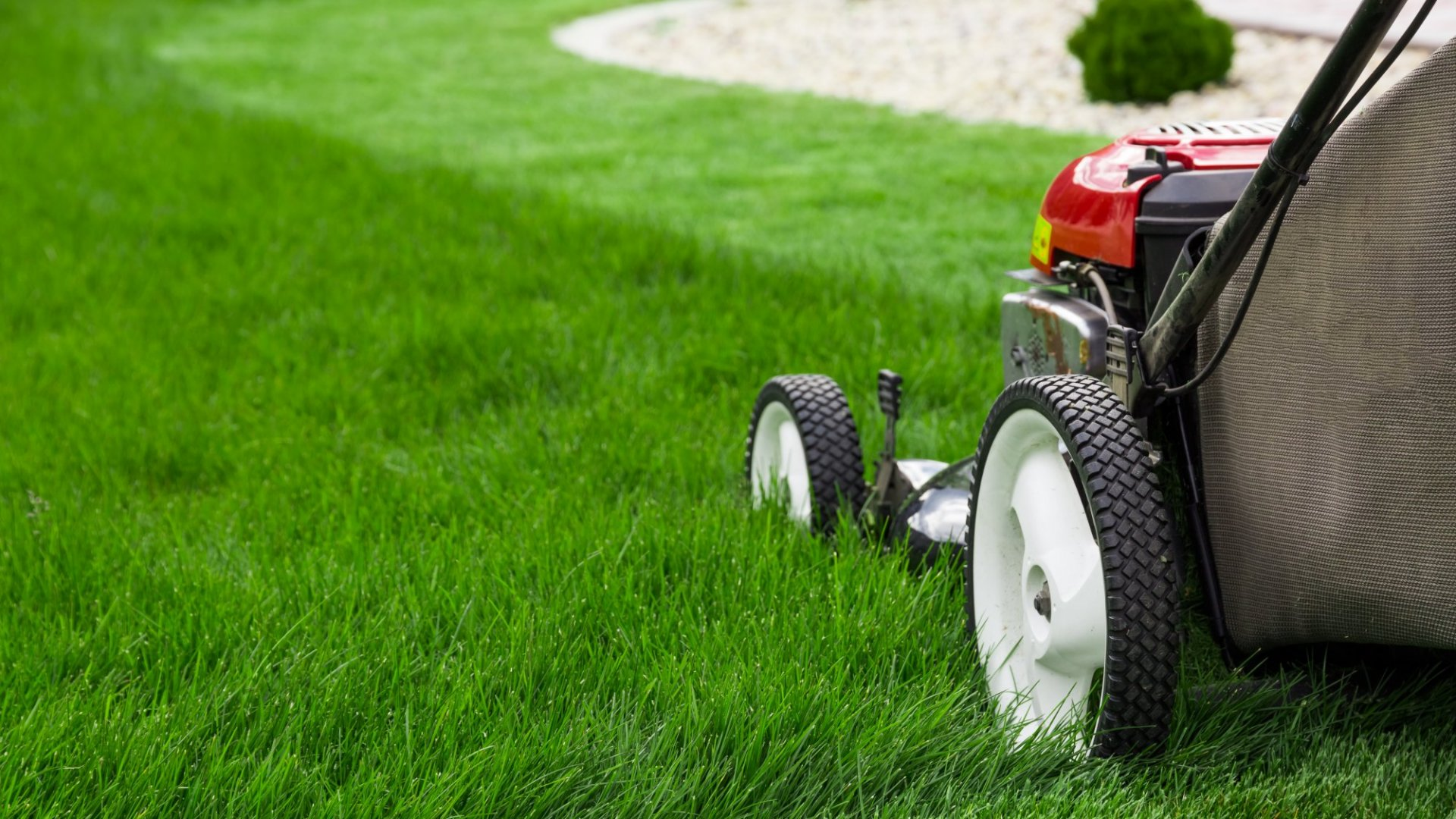5 Ways Lawnmower Parents Hurt More Than They Help (Even Though Their Hearts Are in the Right Place)