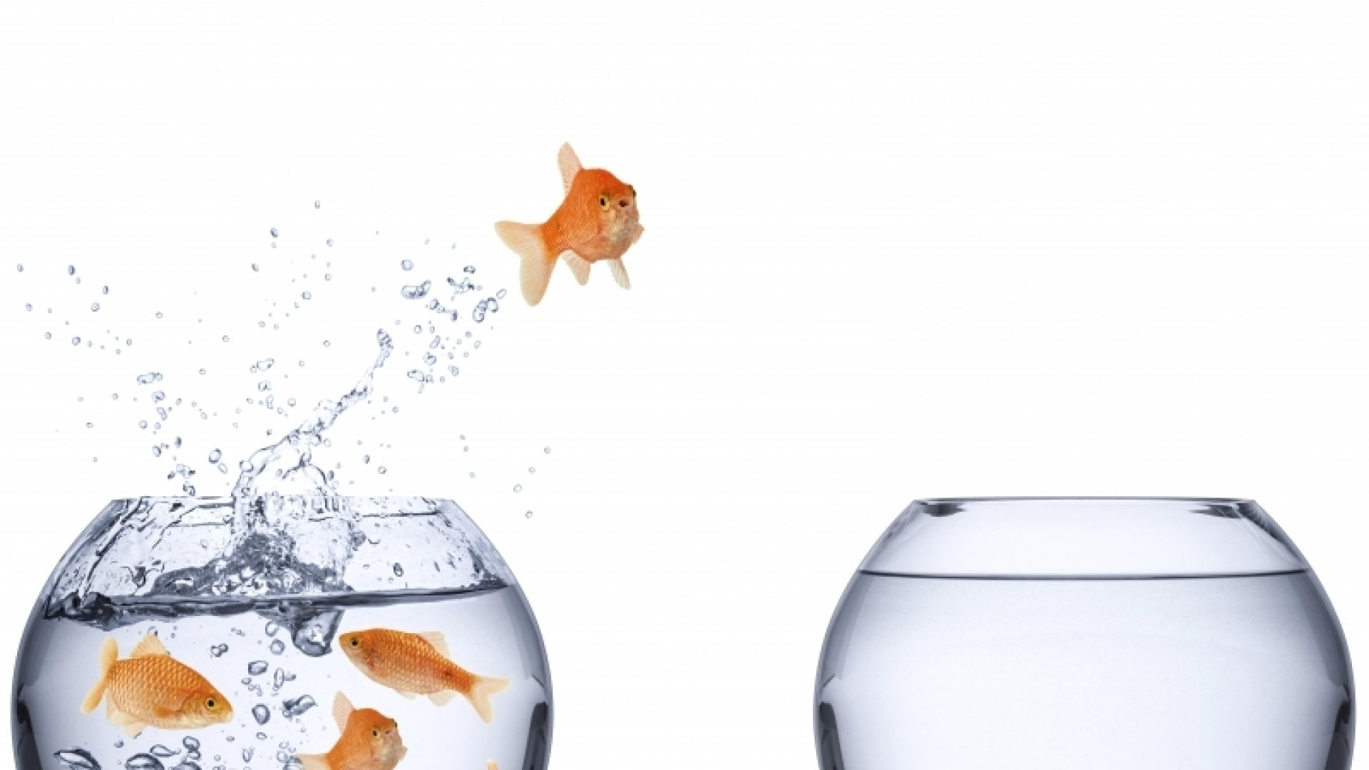 How To Turn Obstacles Into Opportunities
