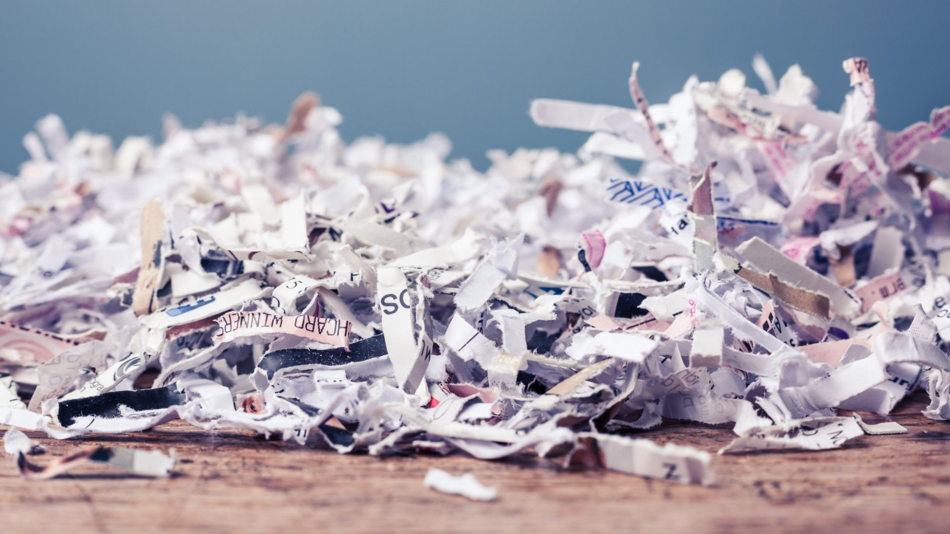 Why You Should Shred Your 2019 Marketing Plan and Do This Instead