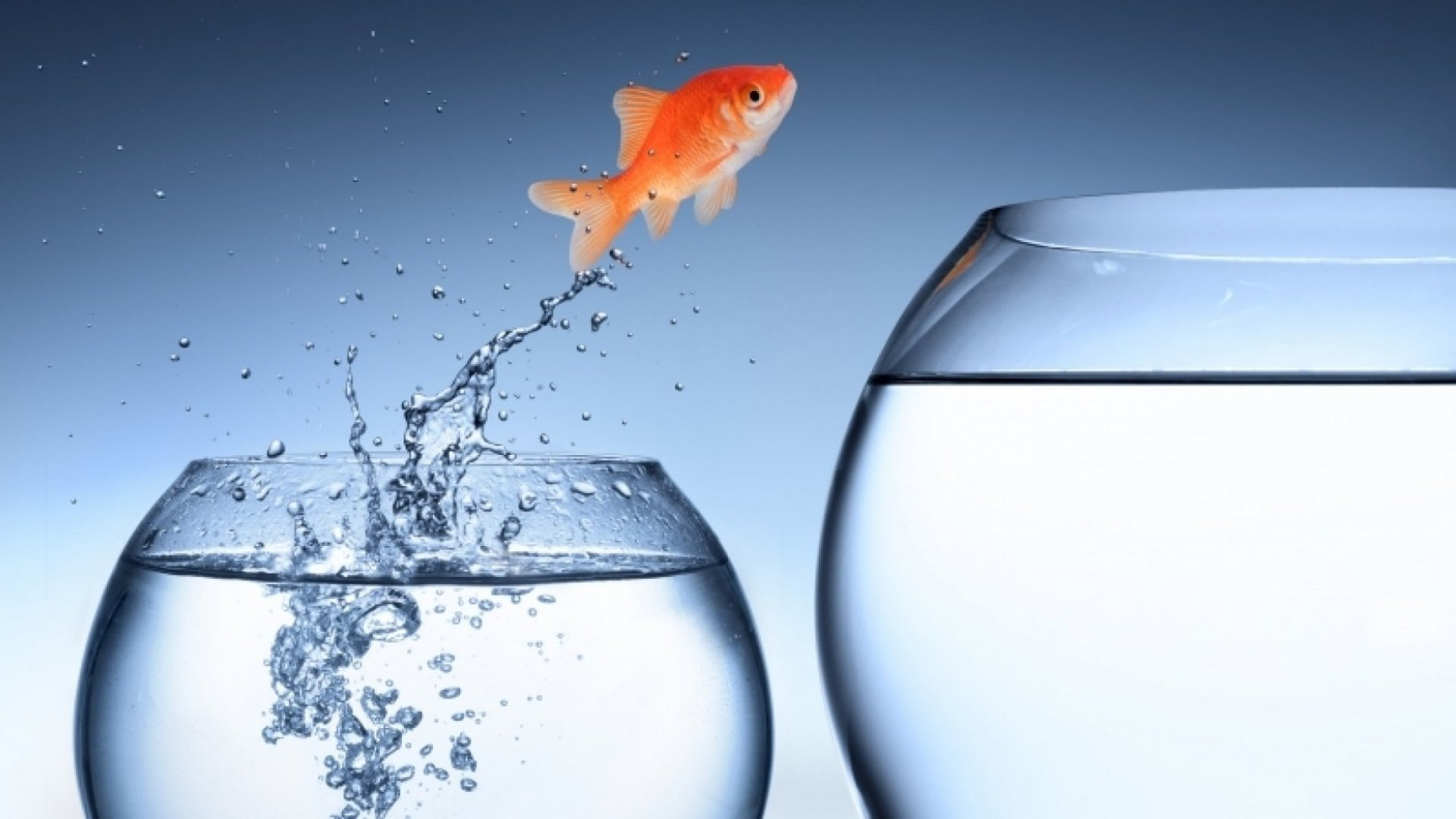 Why the Best Companies Embrace Constant Change