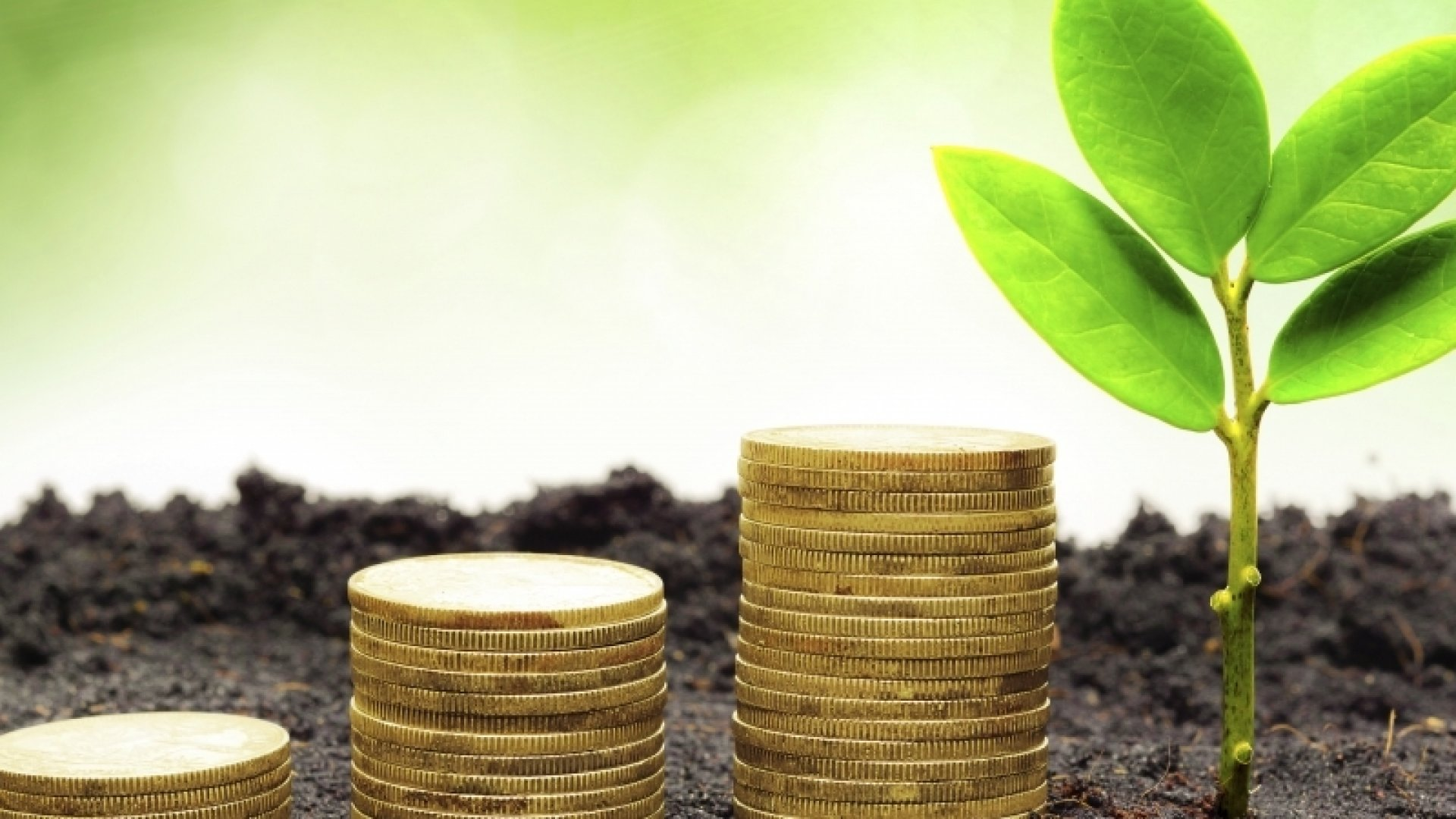 6 Sustainability Investing Trends for 2015
