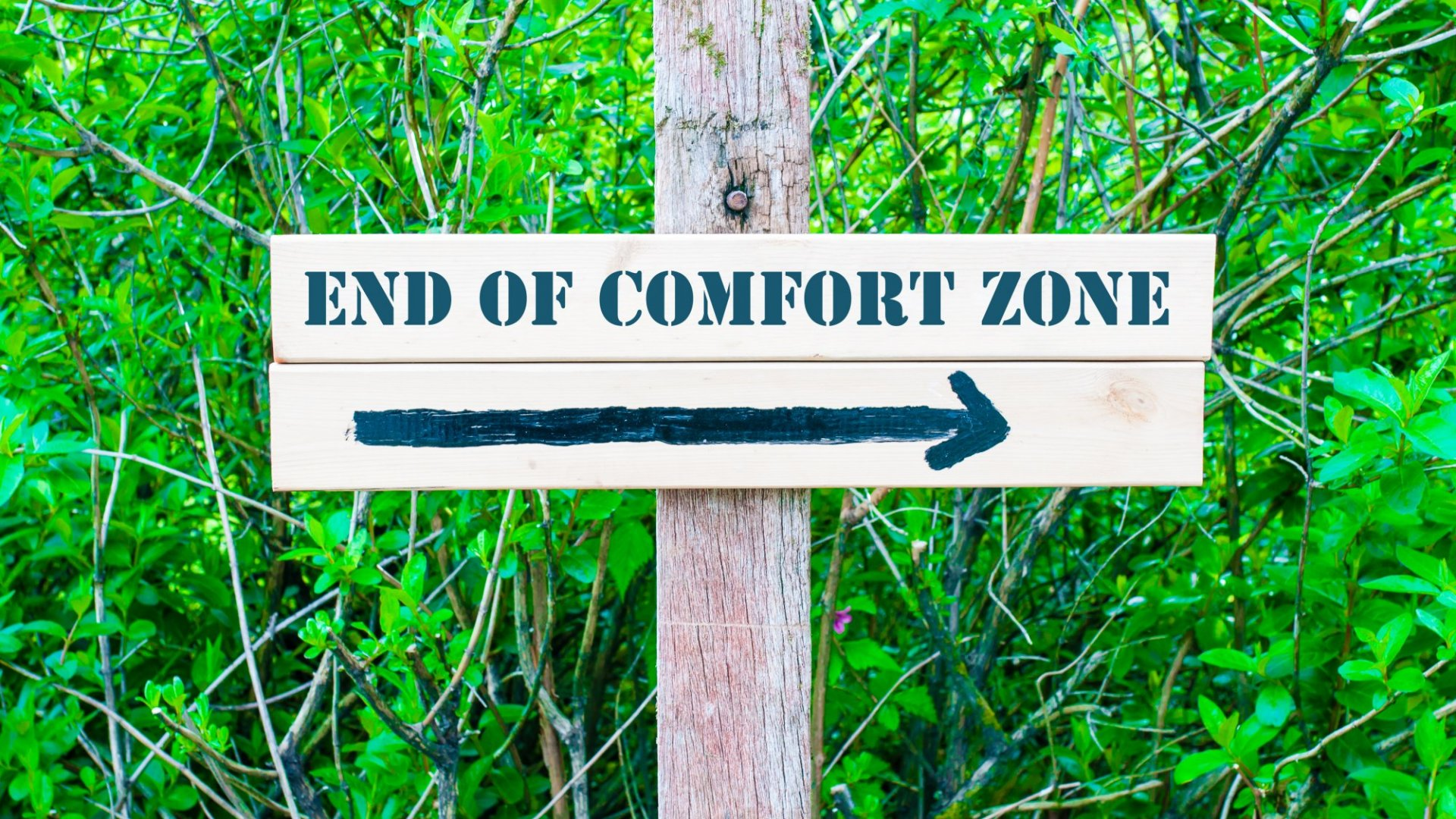 Want to Get Outside Your Comfort Zone? Ask Yourself These 3 Simple Questions