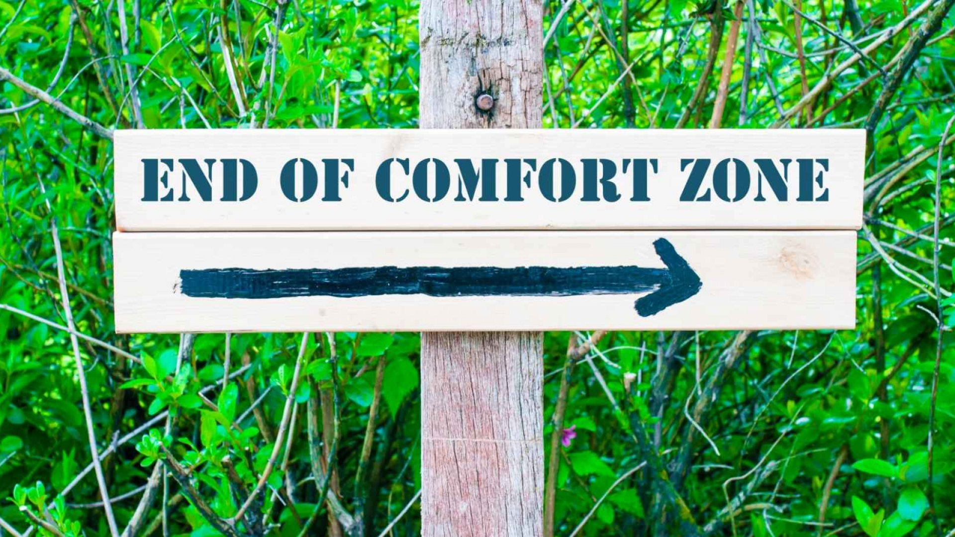 5 Ways to Succeed Outside Your Comfort Zone