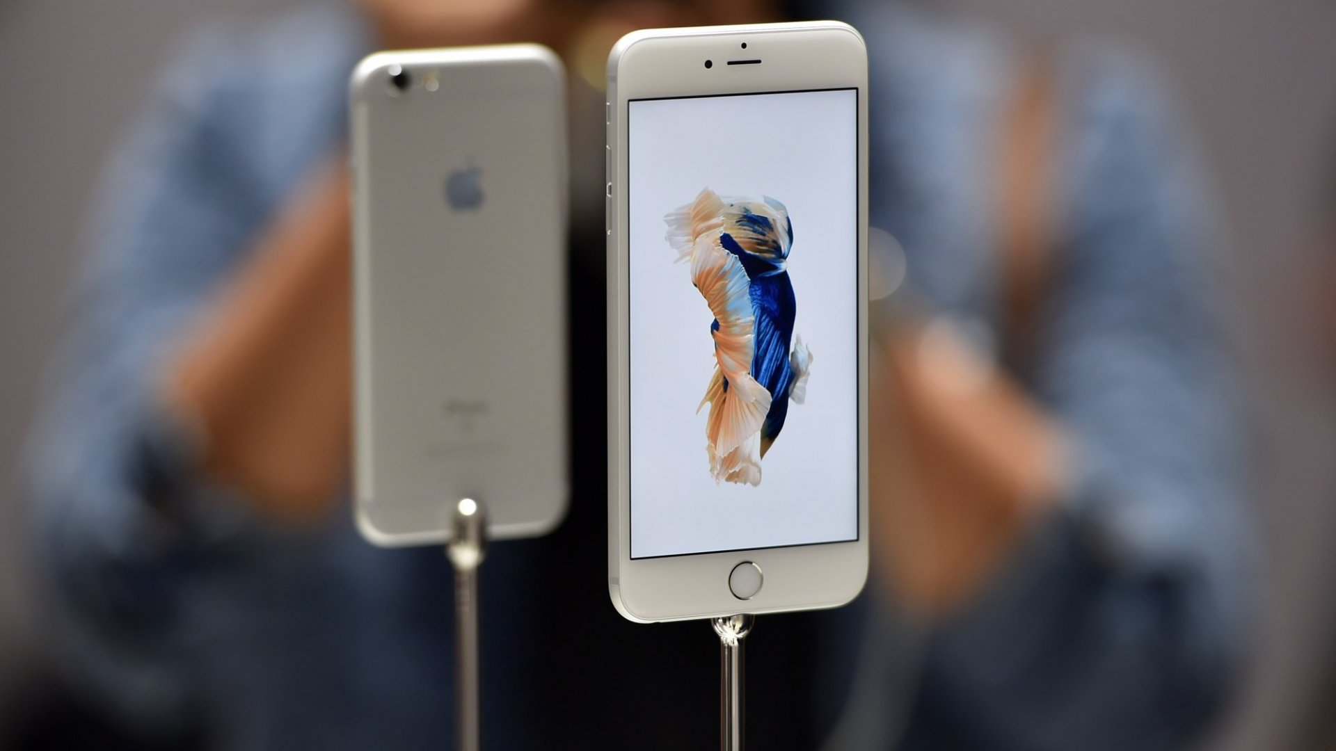 Apple May Cut iPhone 6S Production by 30 Percent in the Next Quarter