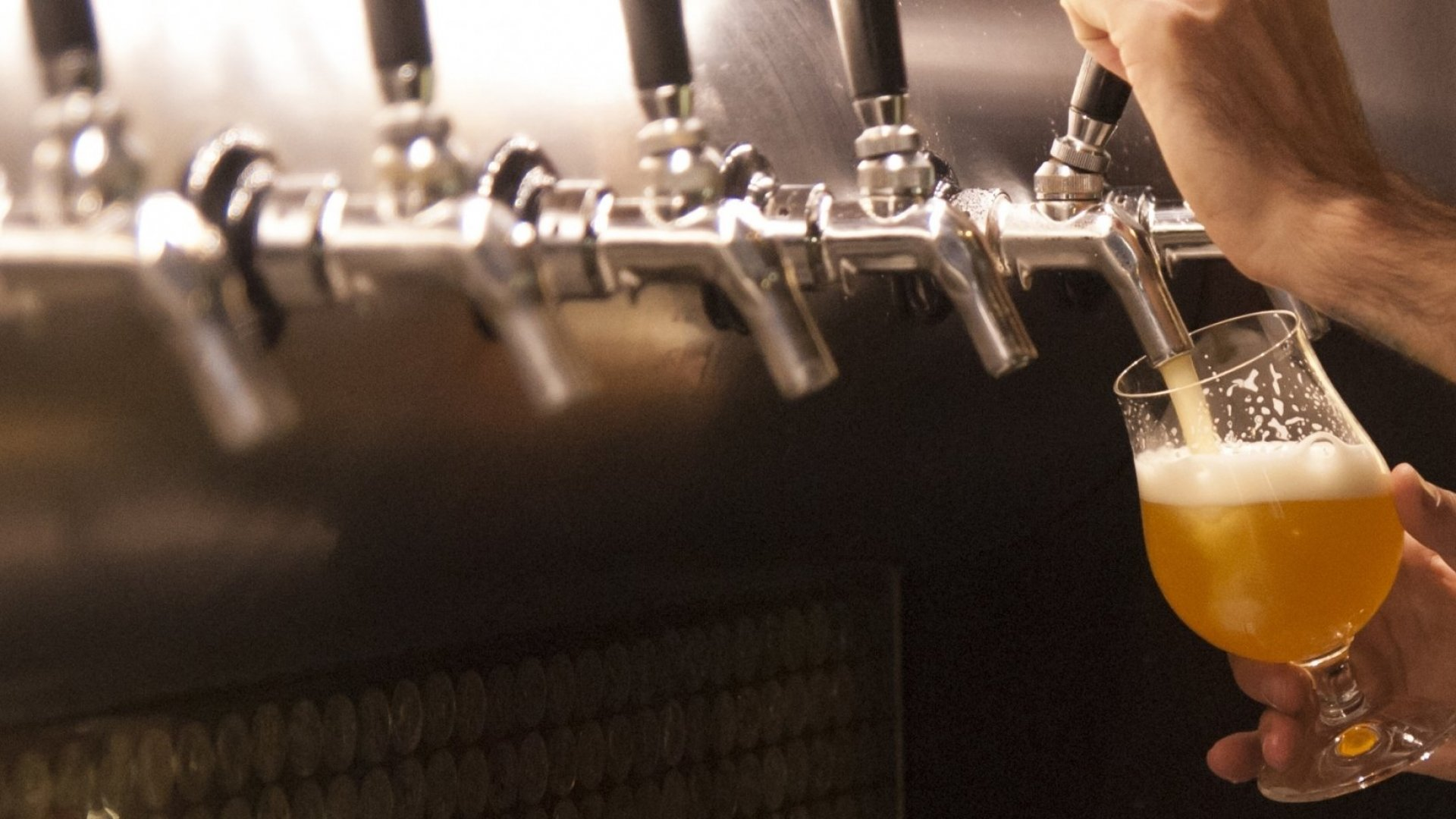 In Competitive Market, a St. Louis Craft Brewer Lifts a Glass to a Pub in Every Neighborhood