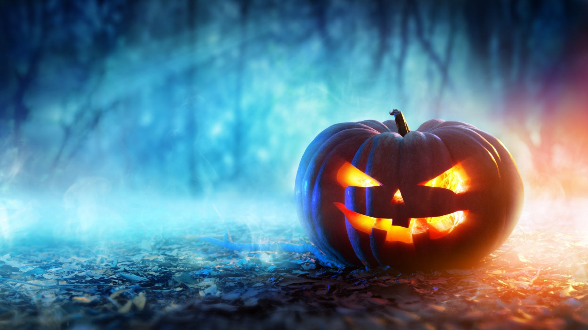 Why We Enjoy Being Terrified on Halloween