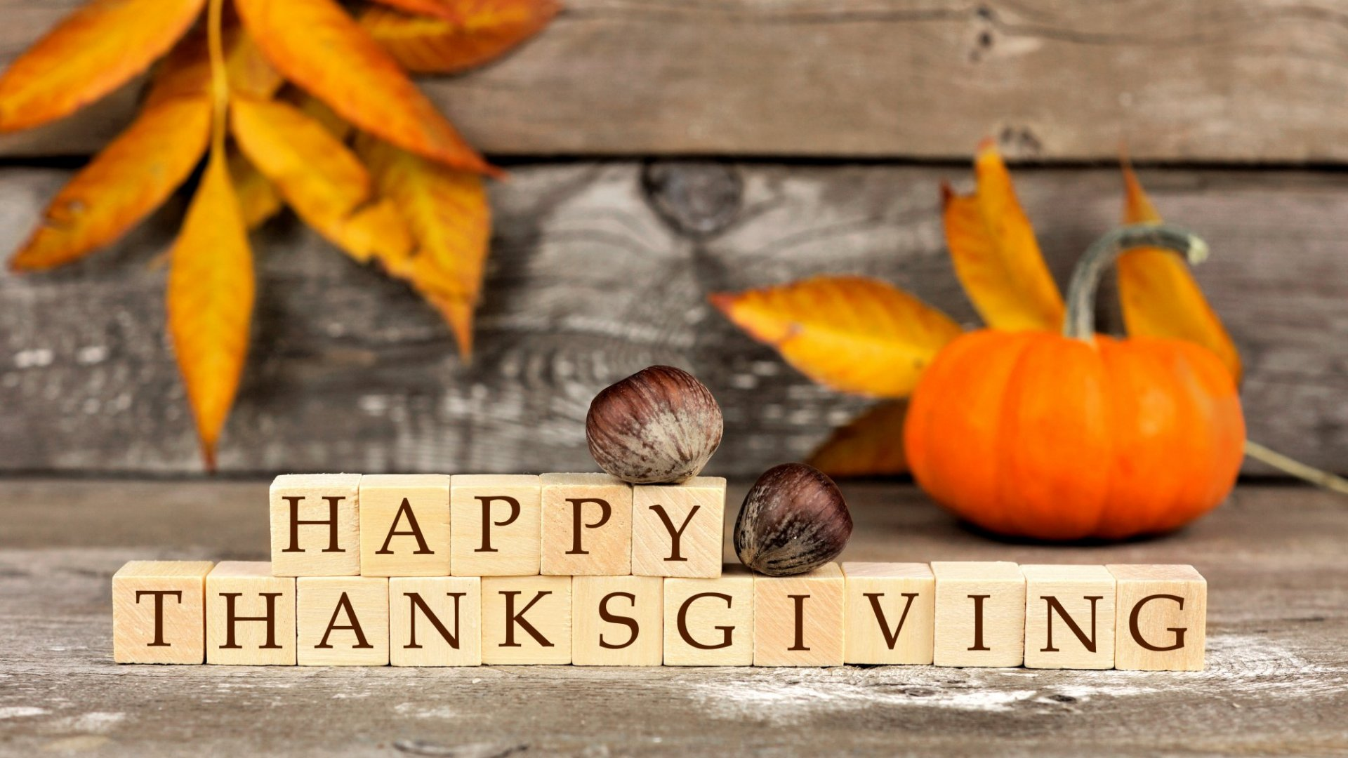 7 Apps That Will Help You Win Thanksgiving