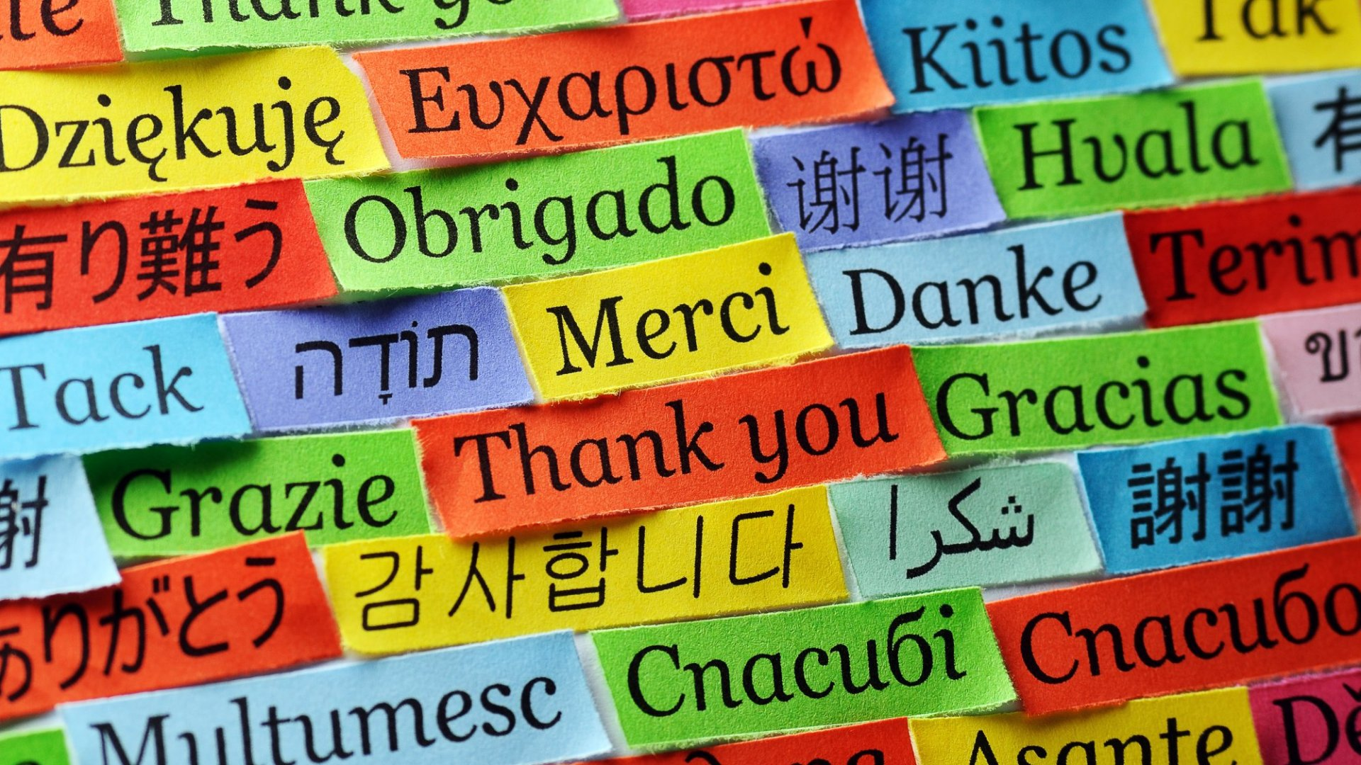 Learn more languages. It'll help you with business.