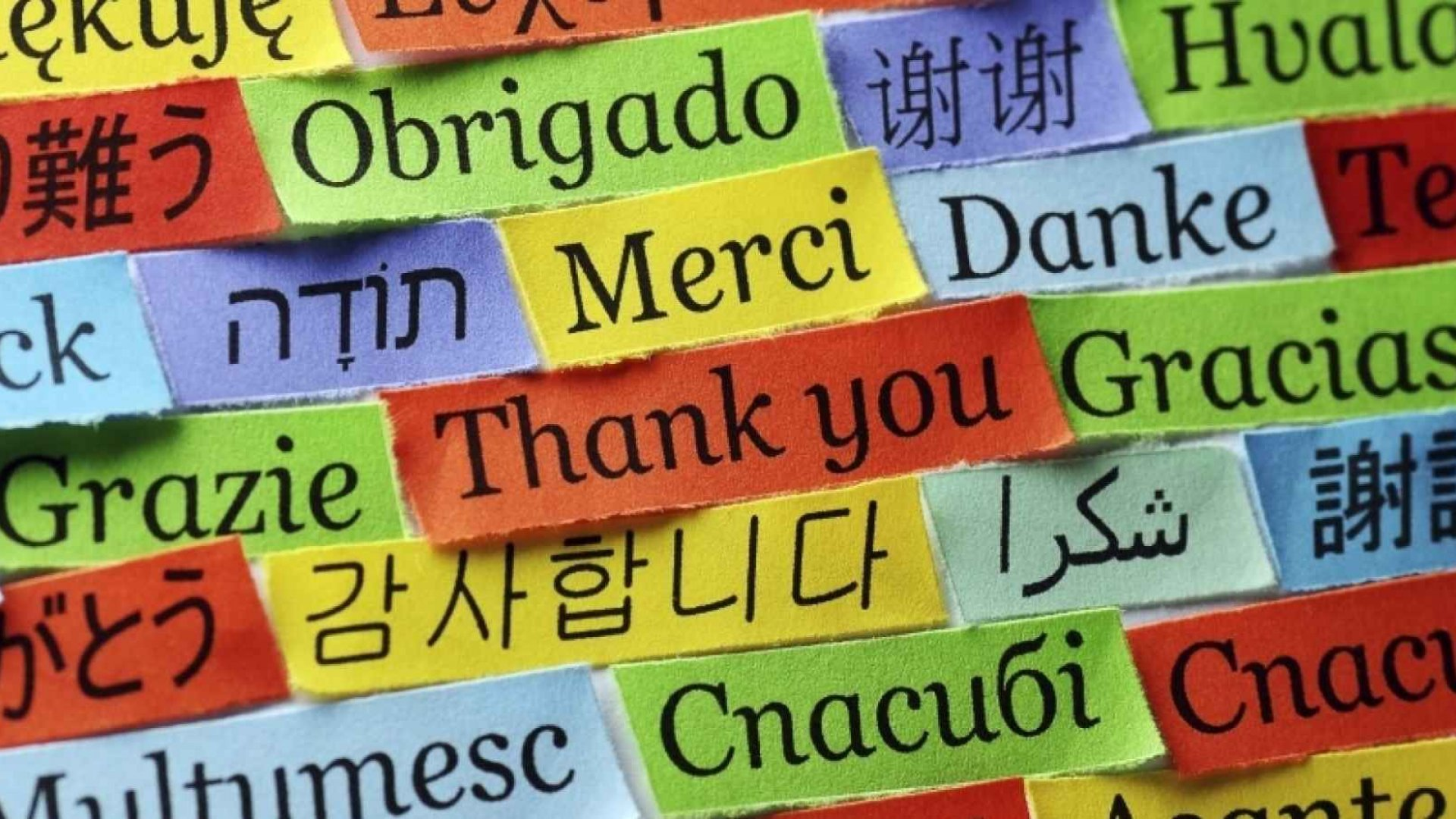 Thanksgiving and the Power of Gratitude in Business