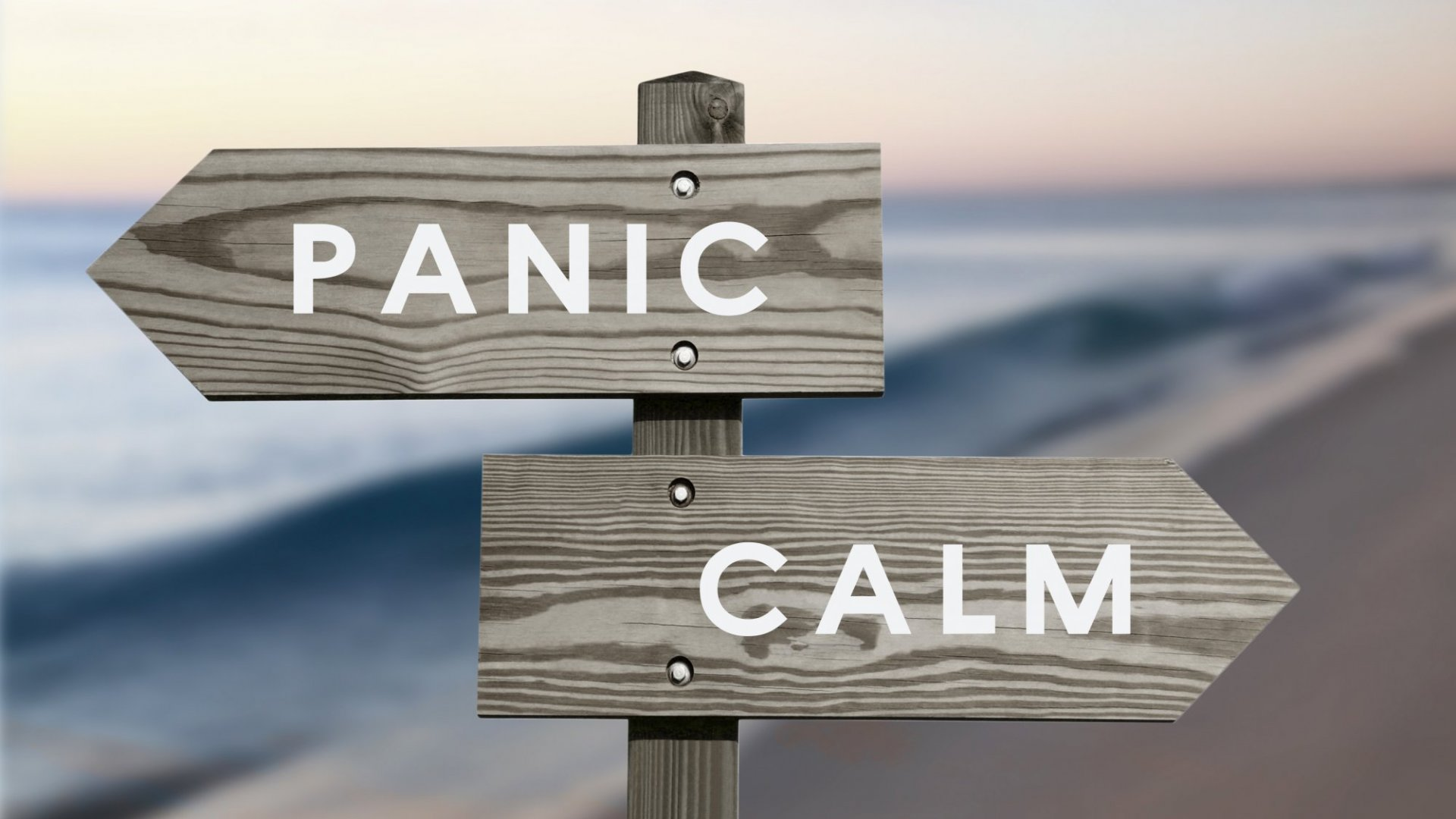 Panic is trying to tell you something: you're not ready. Ignore it.