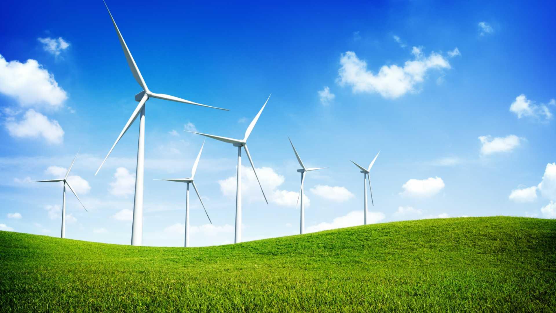 The Future of Environmental Leadership