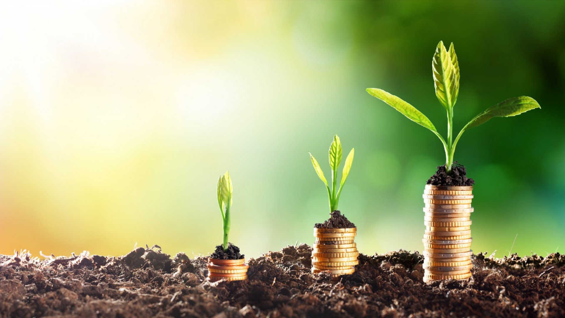 11 Simple Ways to Grow Your Business