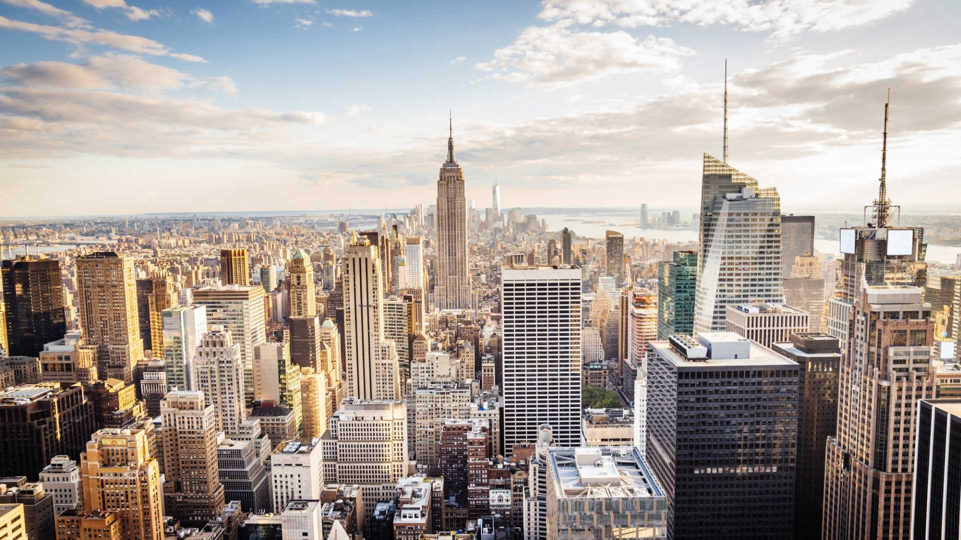 Mattresses, Makeup, and Meal Kits: Top 10 NYC Startups to Watch in 2017