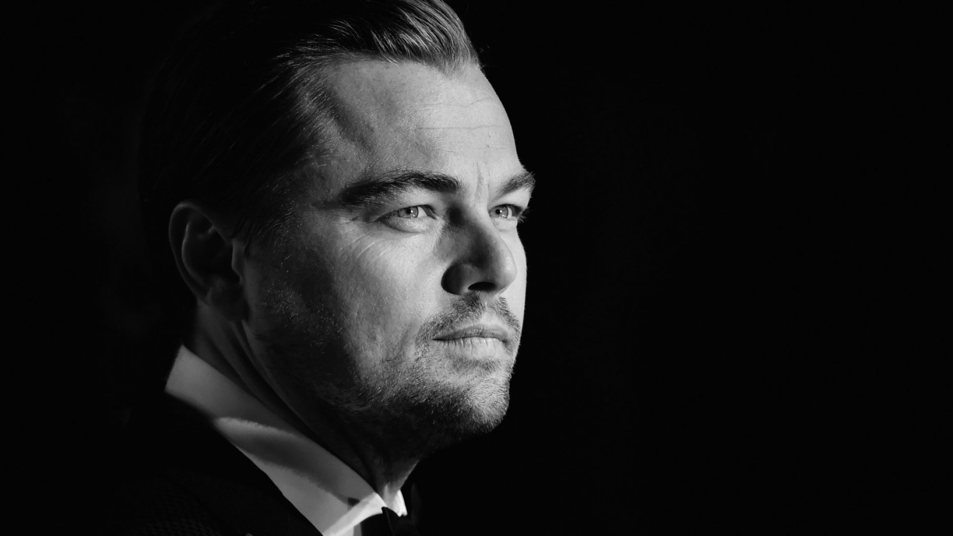 What Leonardo DiCaprio Can Teach Us About Perseverance