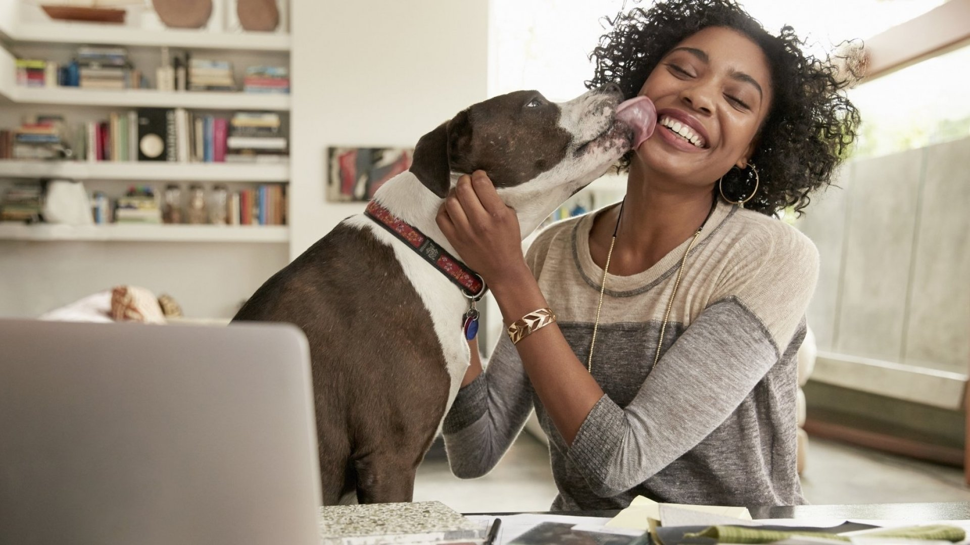The Problem With Dog-Friendly Offices