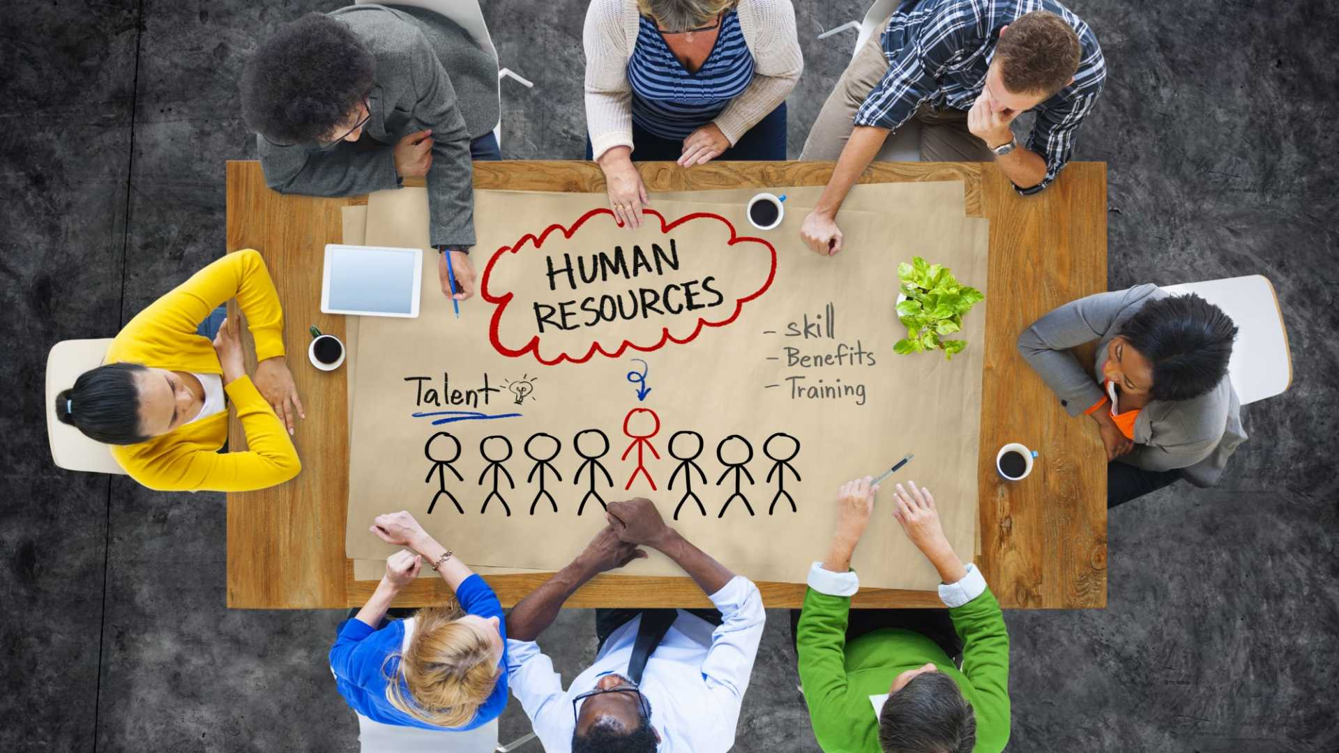 It's Time to Rethink Your Talent Strategy (According to New Study) and Design Thinking Can Help