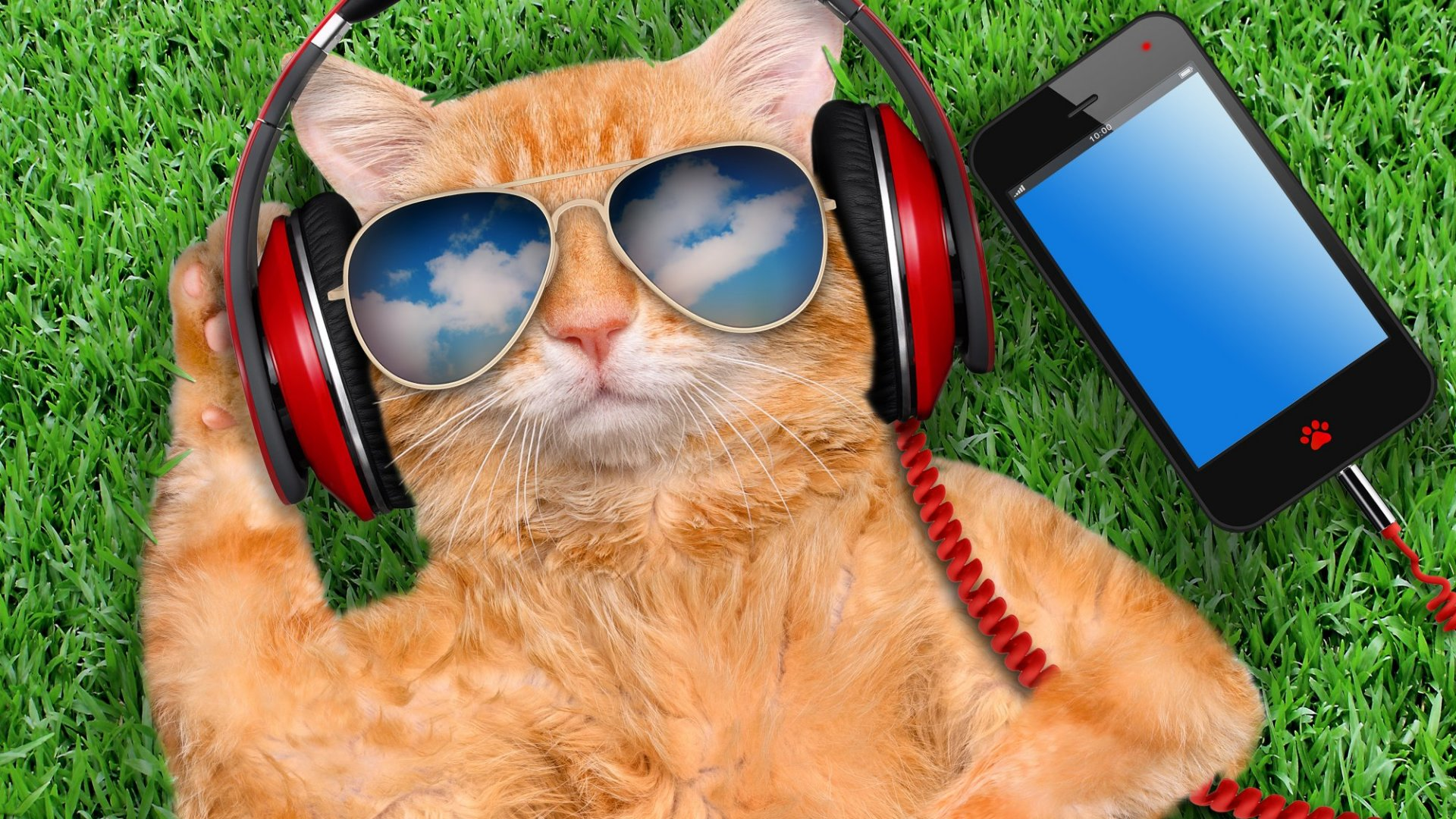 5 Ways Anyone Can Create a Profitable Podcast
