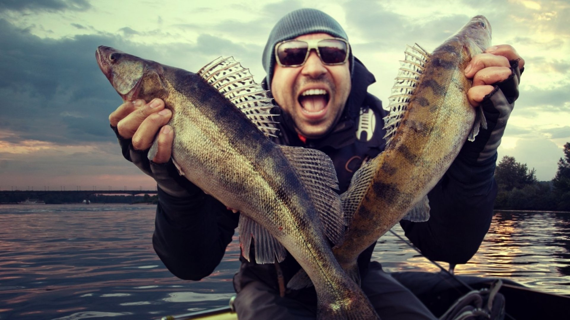 Apply These 3 Fishing Tips to Make Your Sales Emails More Enticing