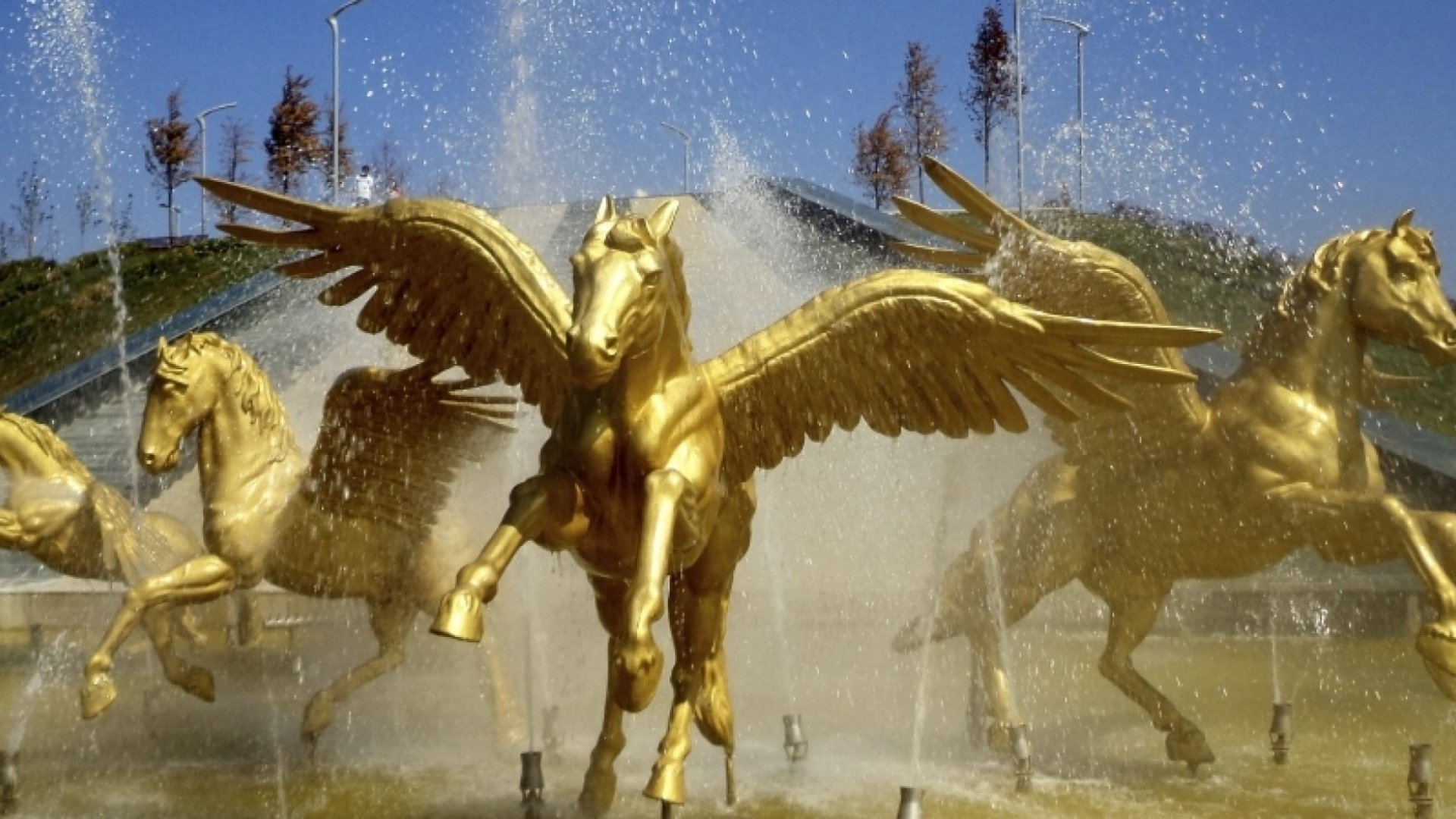 Forget Unicorns, Be a Pegasus, Mayfield Fund's Tim Chang says