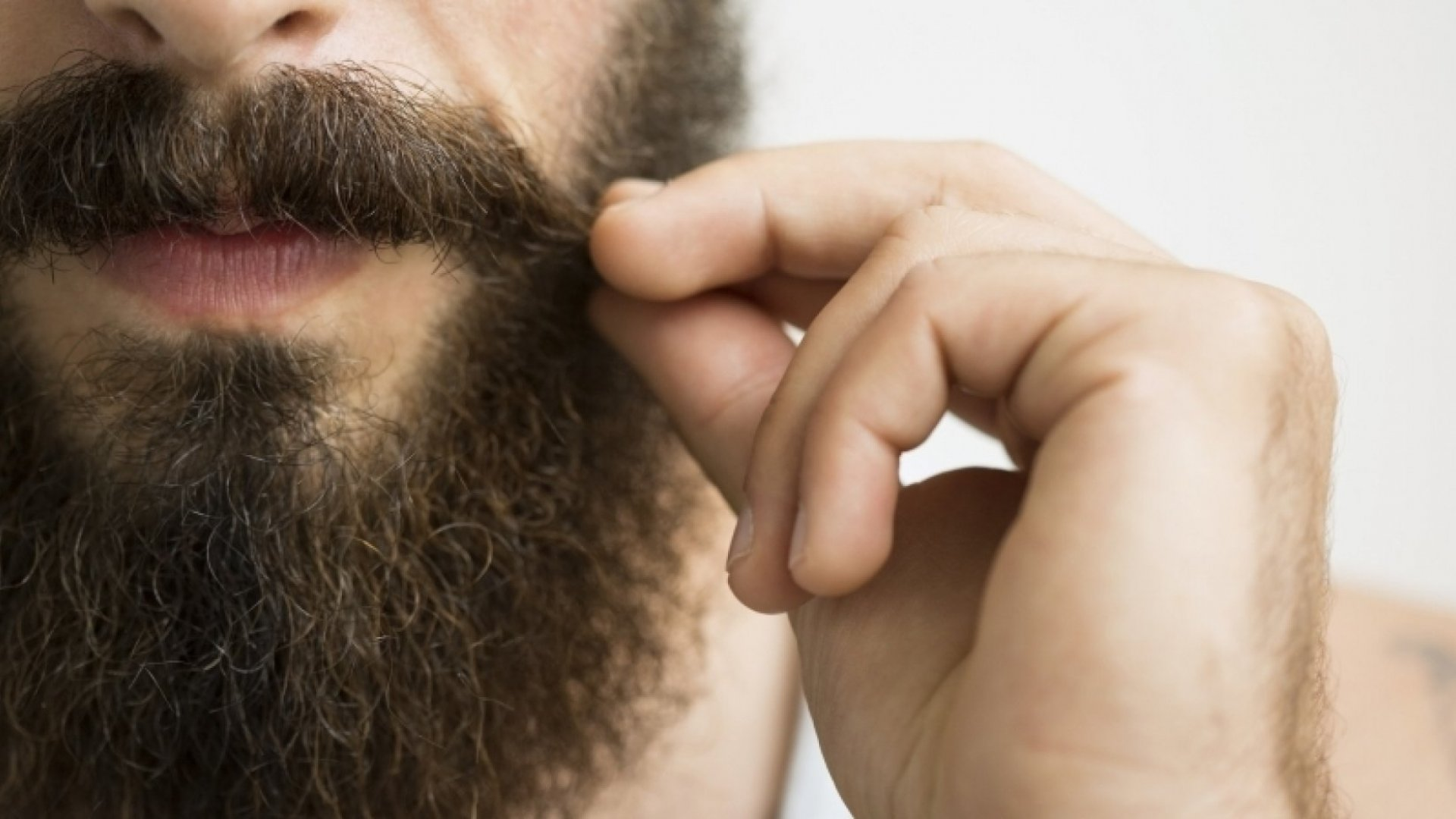 Lions and Camels and Beards (Oh My!): The Making of a Viral Video
